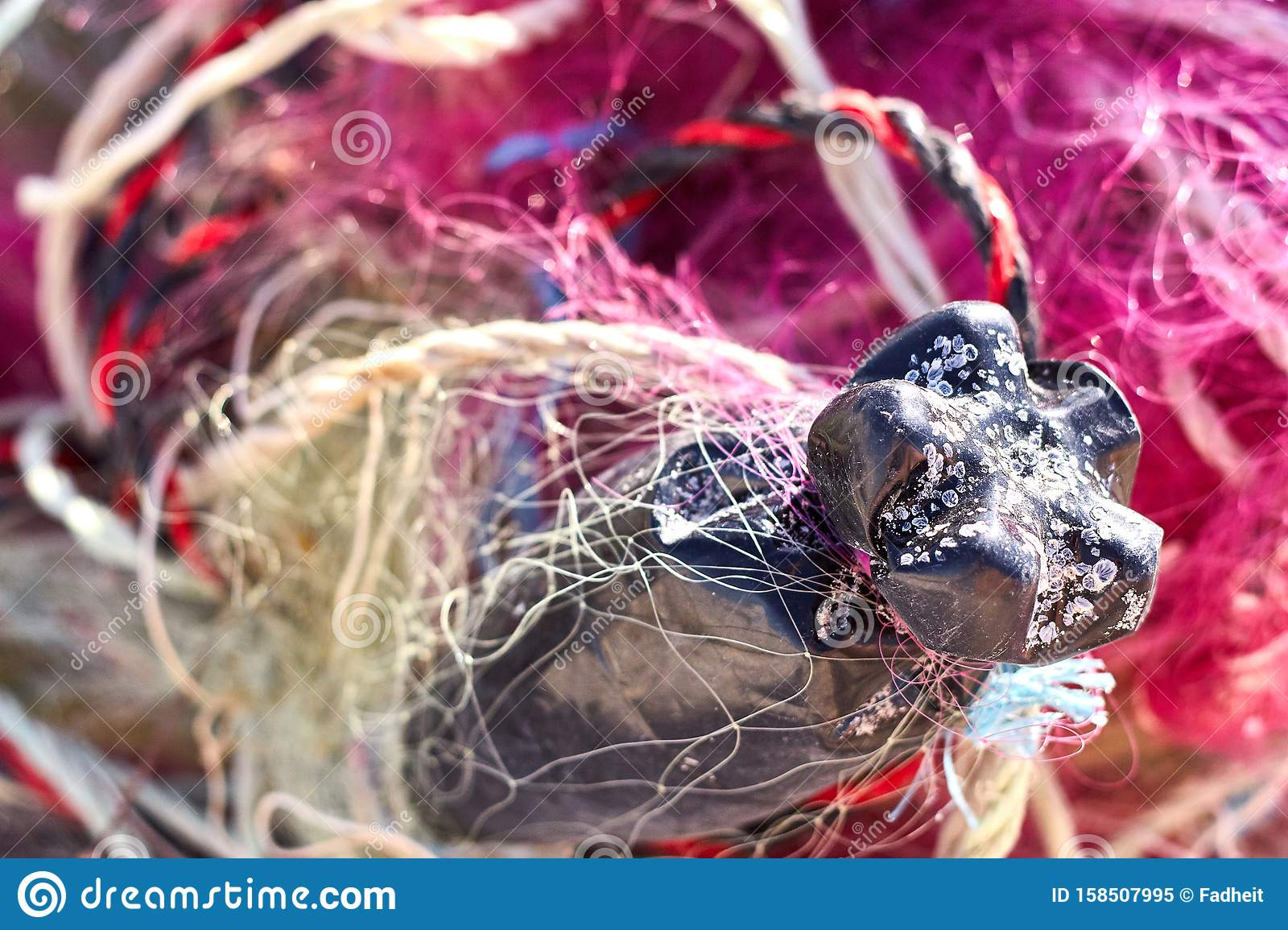 A Tangled Mess Of Fishing Nets Plastic Rope And Other Debris Washed Up On A Coastal Beach Stock Image Image Of String Pollution 158507995