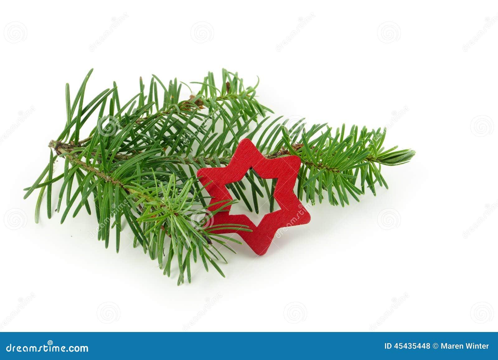 Tannenzweig Mit Dem Kleinen Roten Weihnachtsstern, Lokalisiert Auf ...