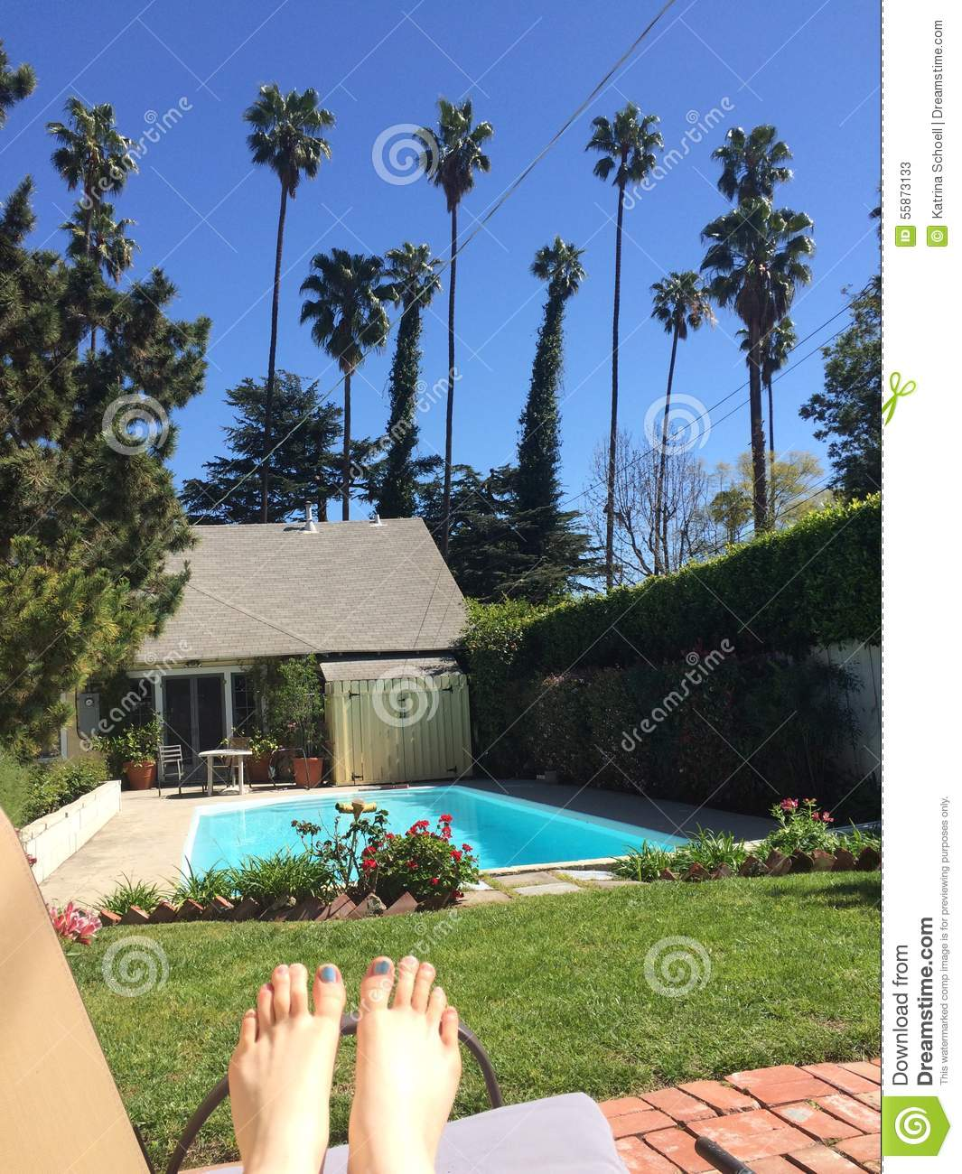 Tanning by the pool stock image. Image of backyard ...