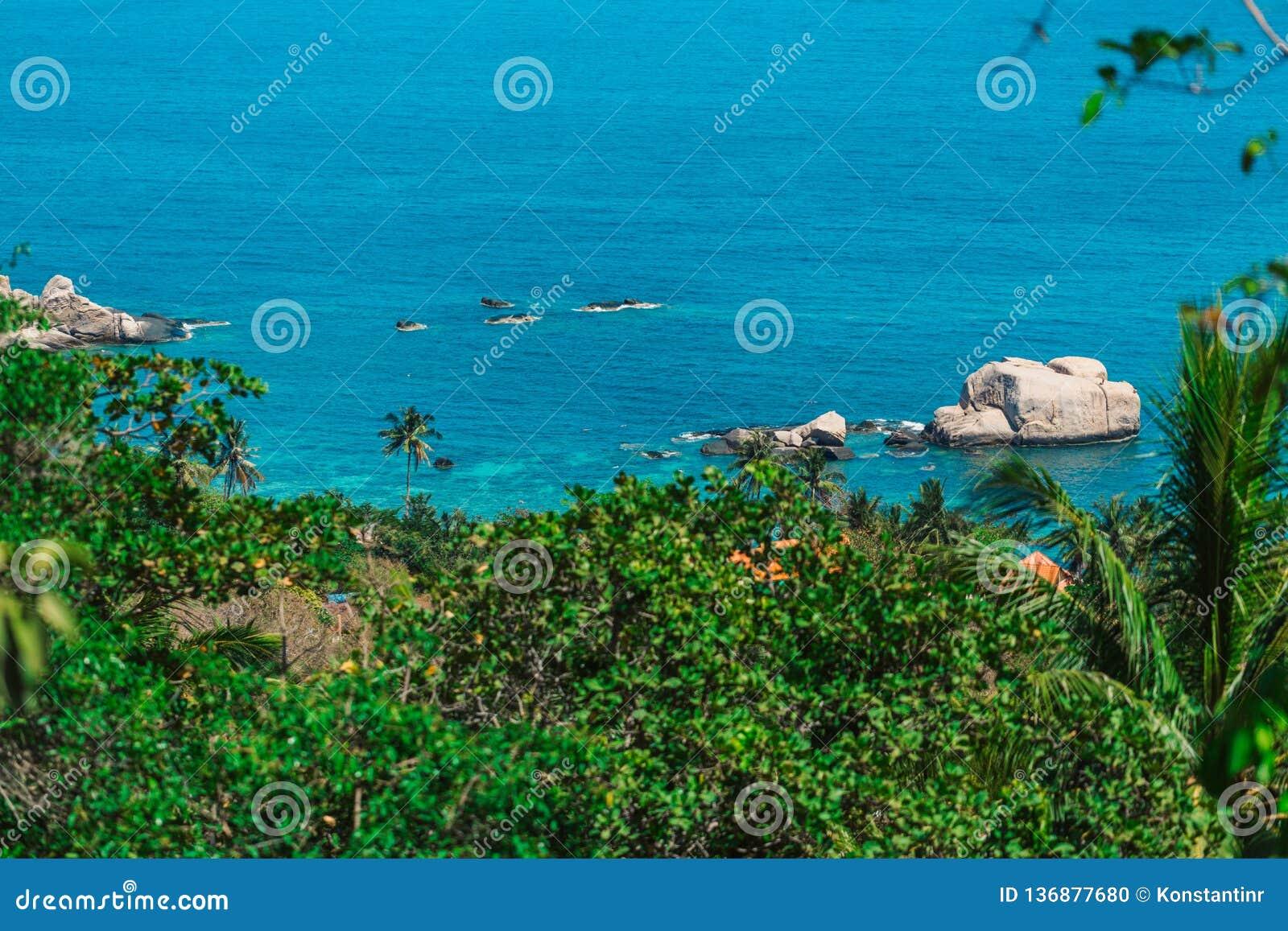 Tannot zatoka na Koh Tao wyspie Skały na brzeg tropikalny las z kokosowymi drzewami