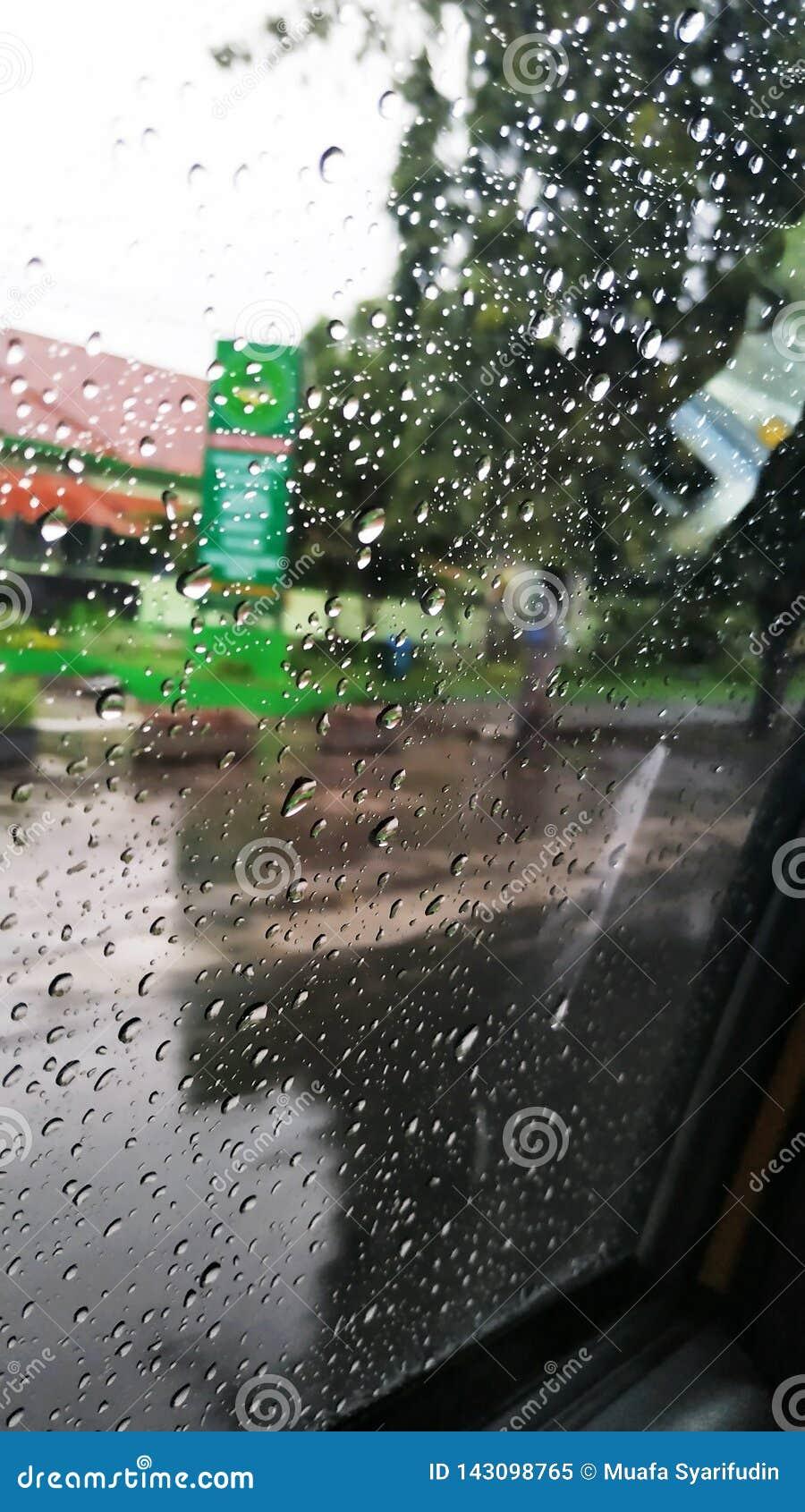 Tapetregndroppar på fönstret