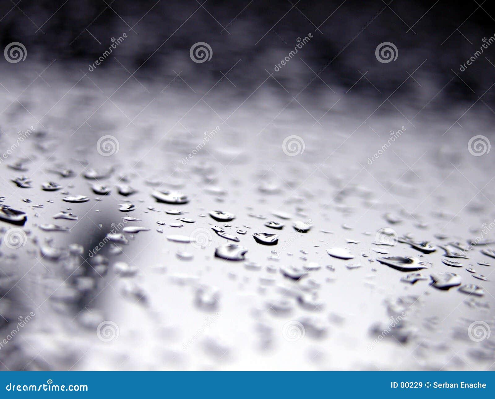 Tappar makrosharpvatten