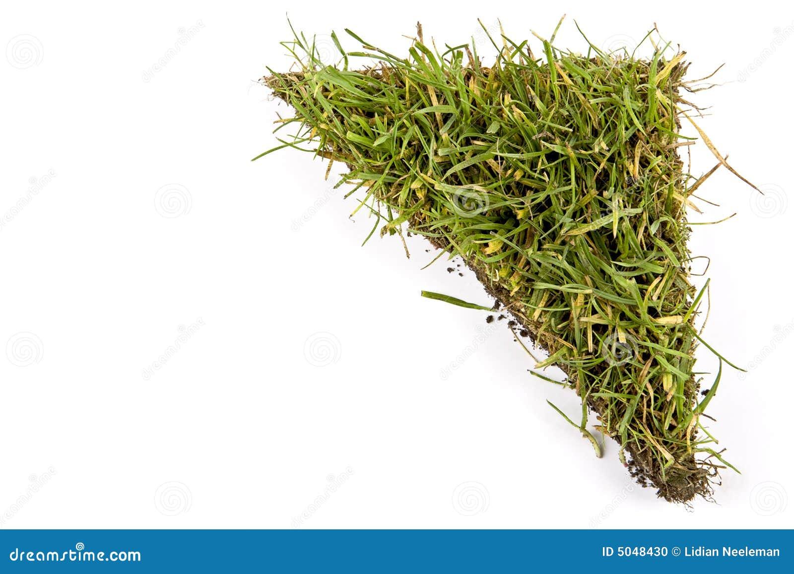 Tappeto erboso fotografia stock immagine di radice for Tappeto erboso prezzi