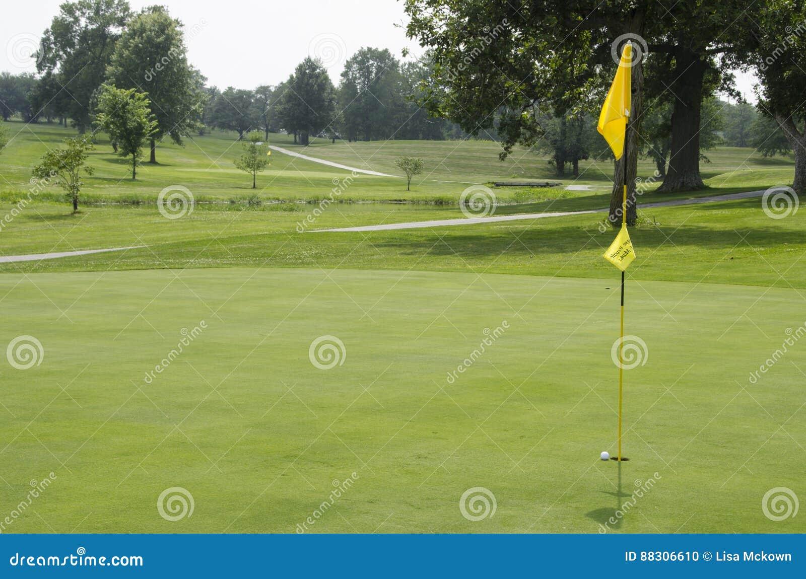 Tappeto erboso di golf fotografia stock immagine di erba for Tappeto erboso a rotoli prezzi
