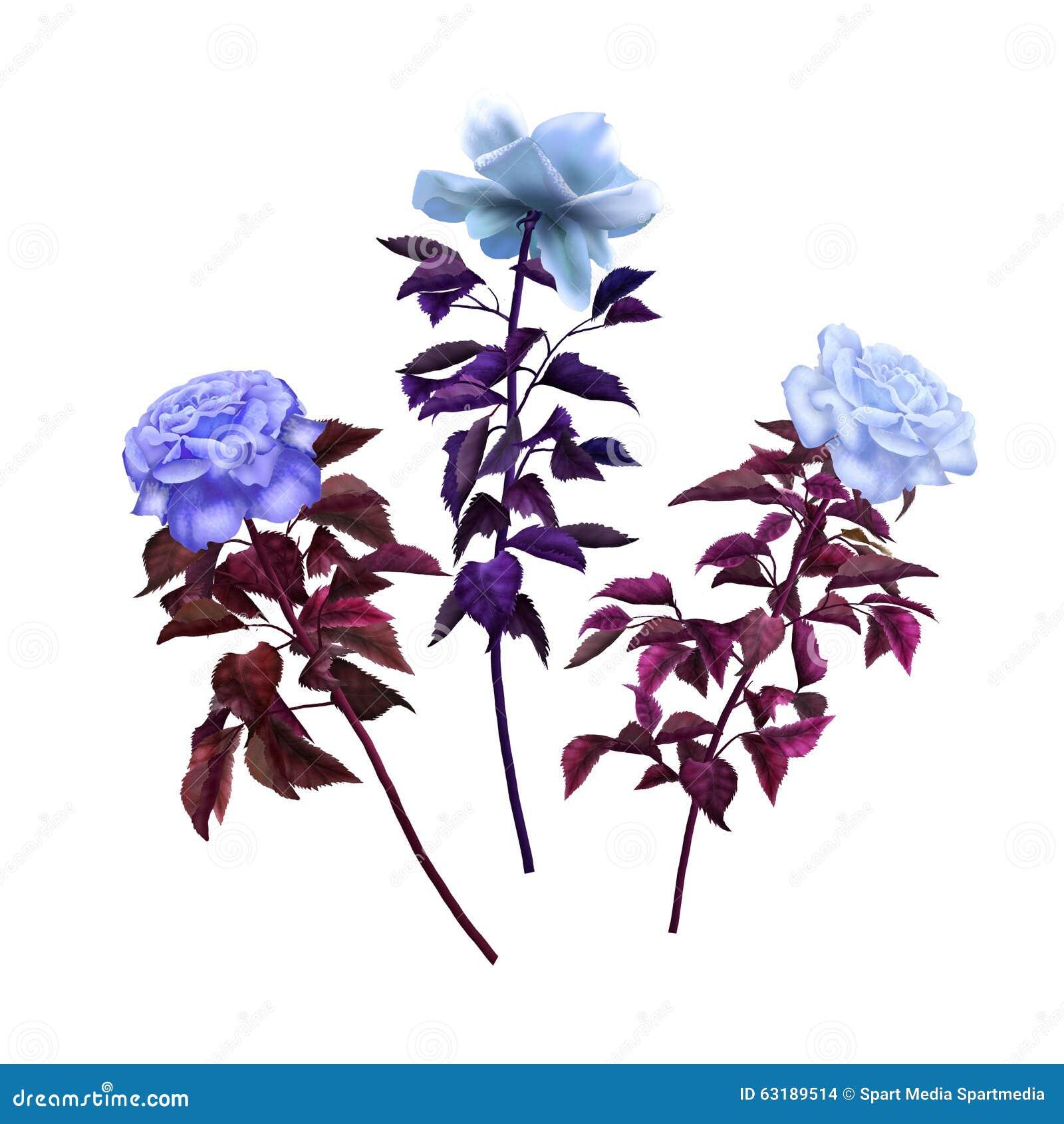 Tappning för tre olik rosor