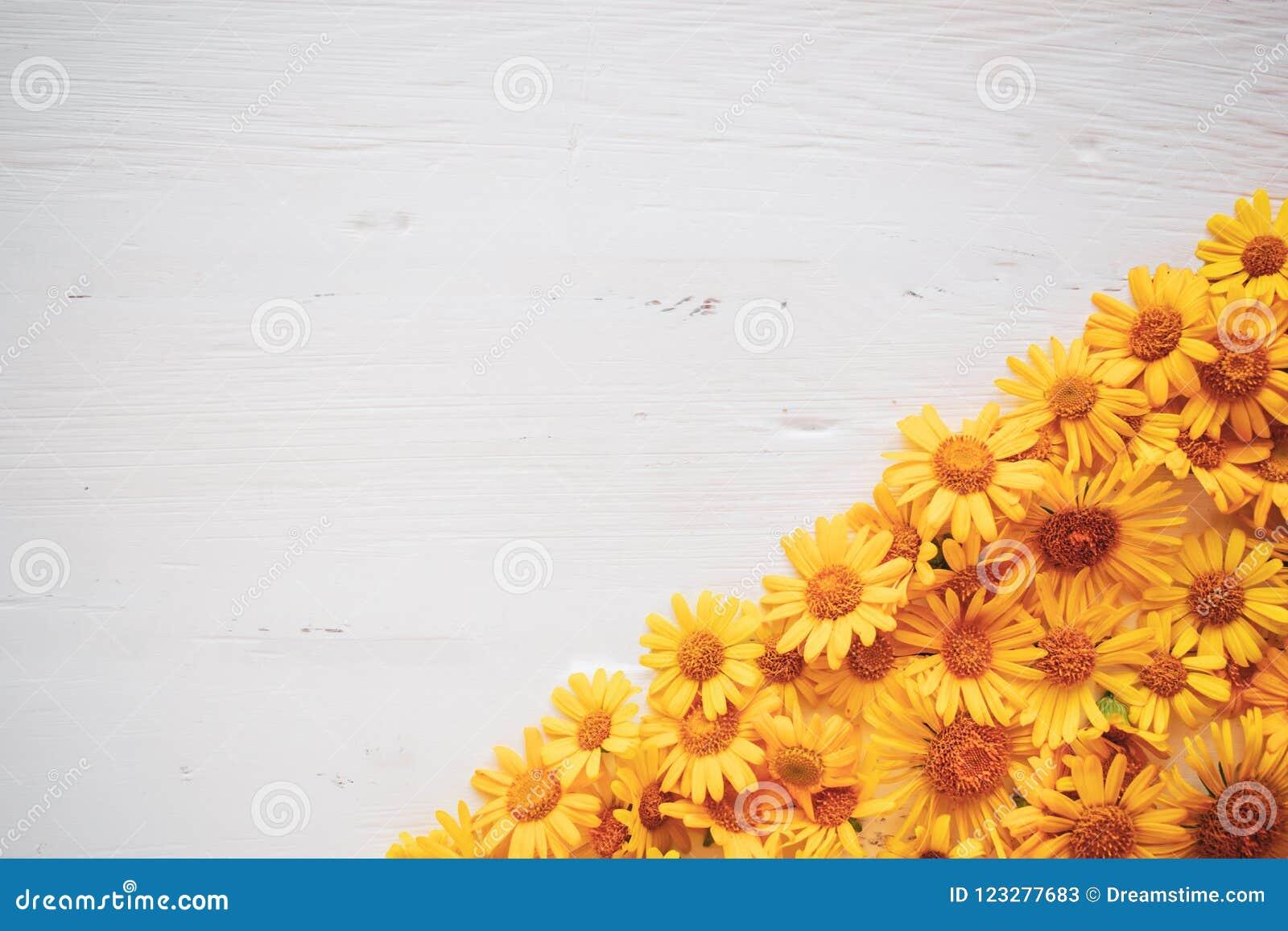 Tappningbakgrund för vitt bräde med gula blommor