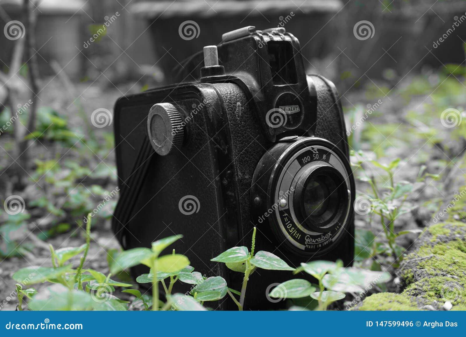 TappningGevabox Gevaert kamera