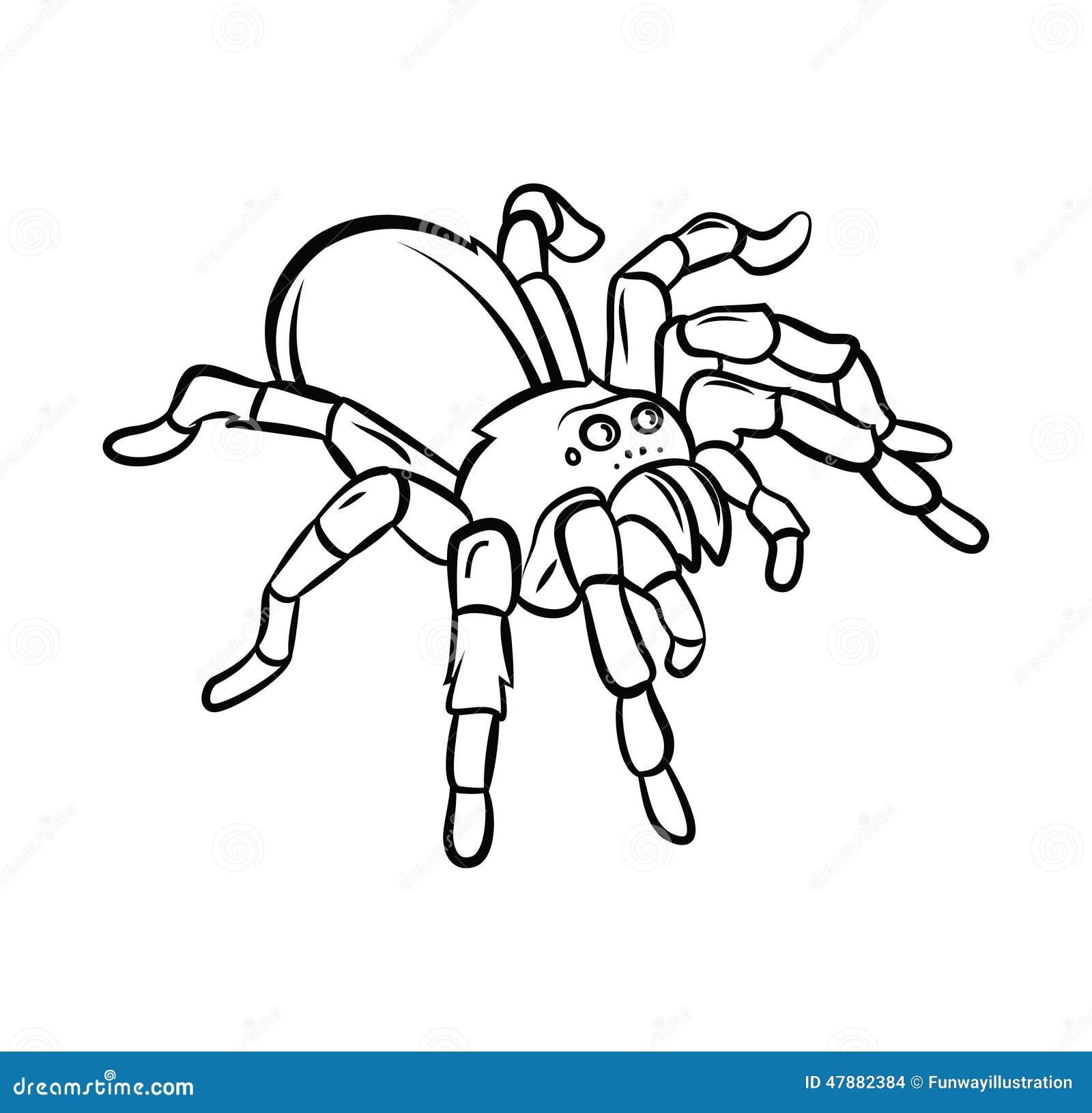 Tarantula Tattoo Stock Vector - Image: 47882384