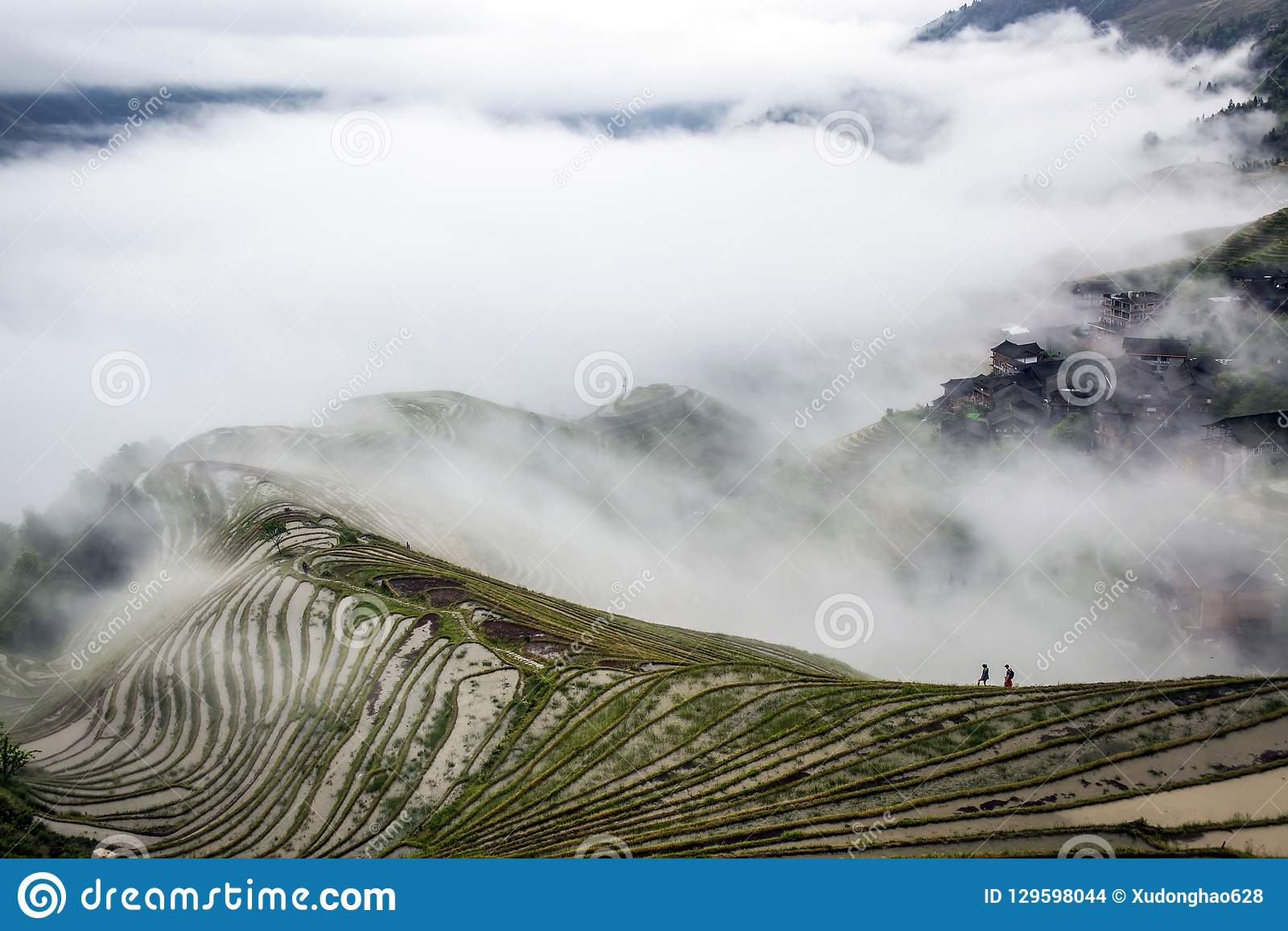 Tarasowaty pole w chmurze