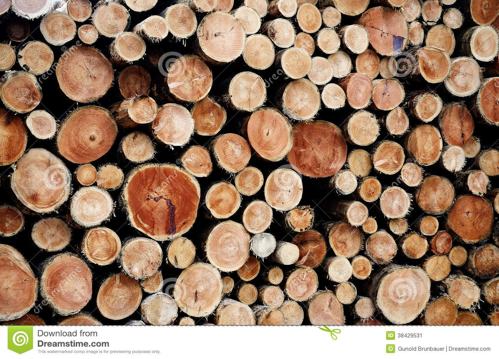 Tarcicy drewno