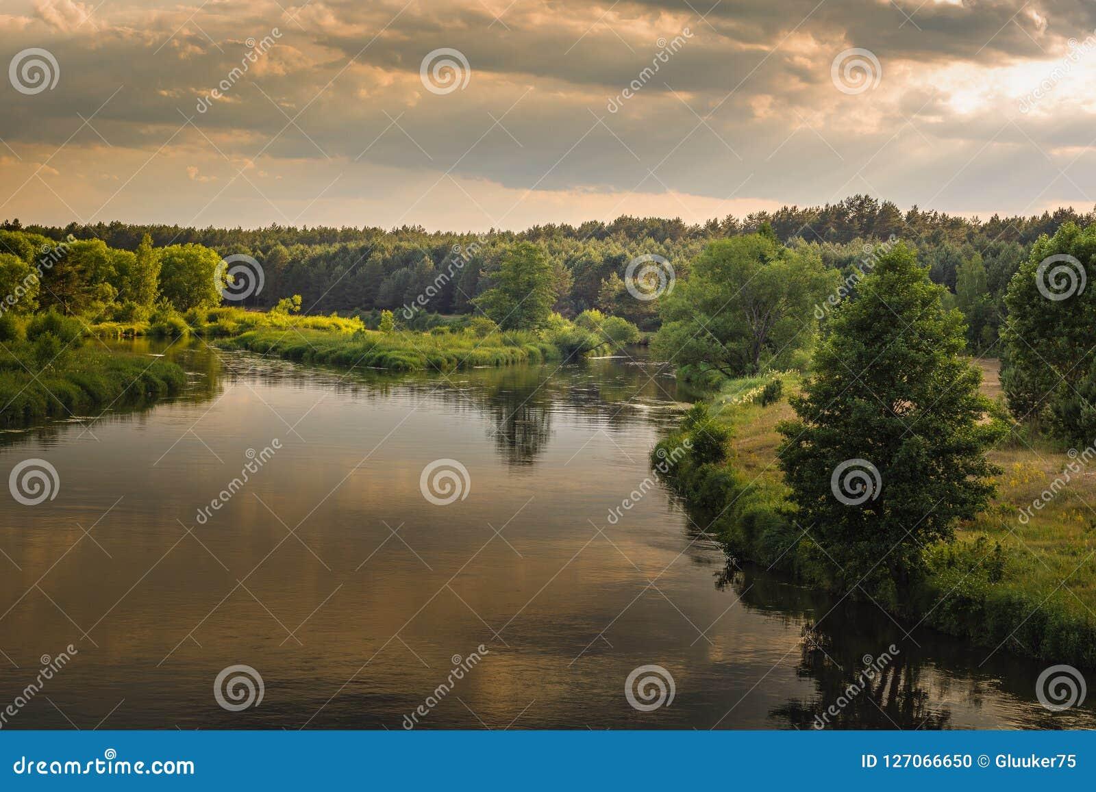 Tarde caliente del verano una vista del río con las costas herbosas, los árboles y un bosque denso debajo de un cielo nublado