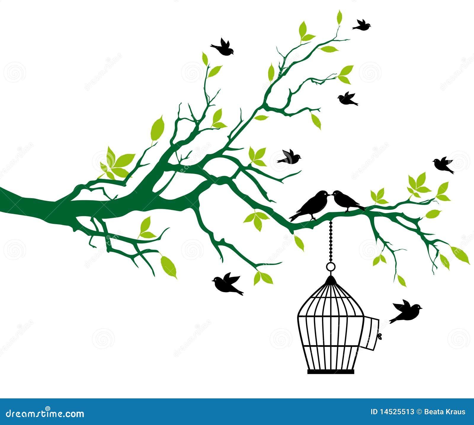 Target1772_1_ wiosna drzewa birdcage ptaki