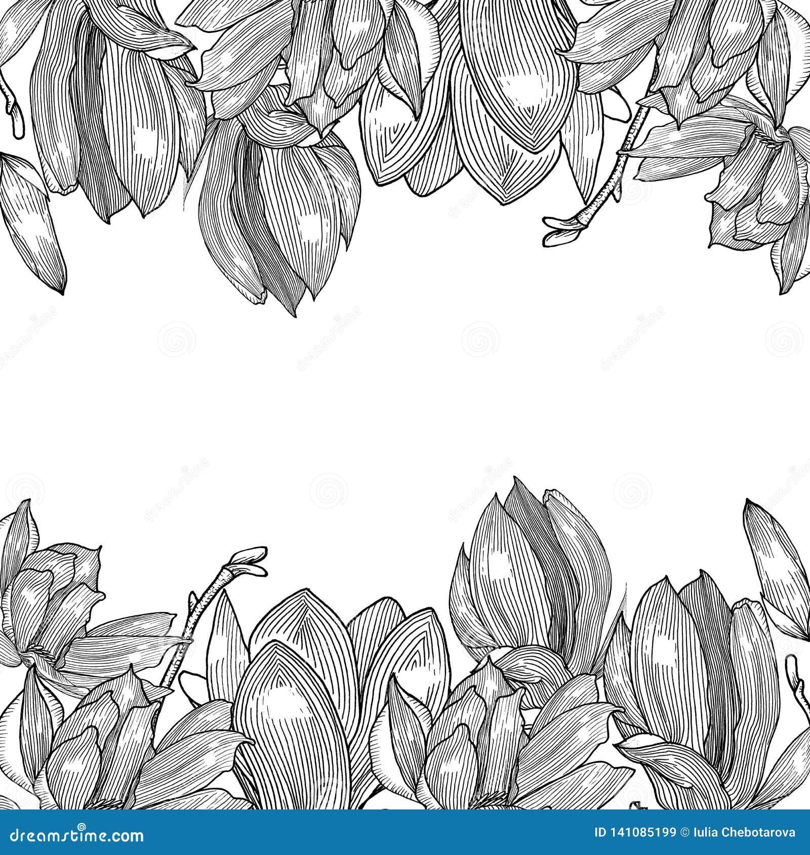 Tarjeta con la magnolia gráficos Mano drenada