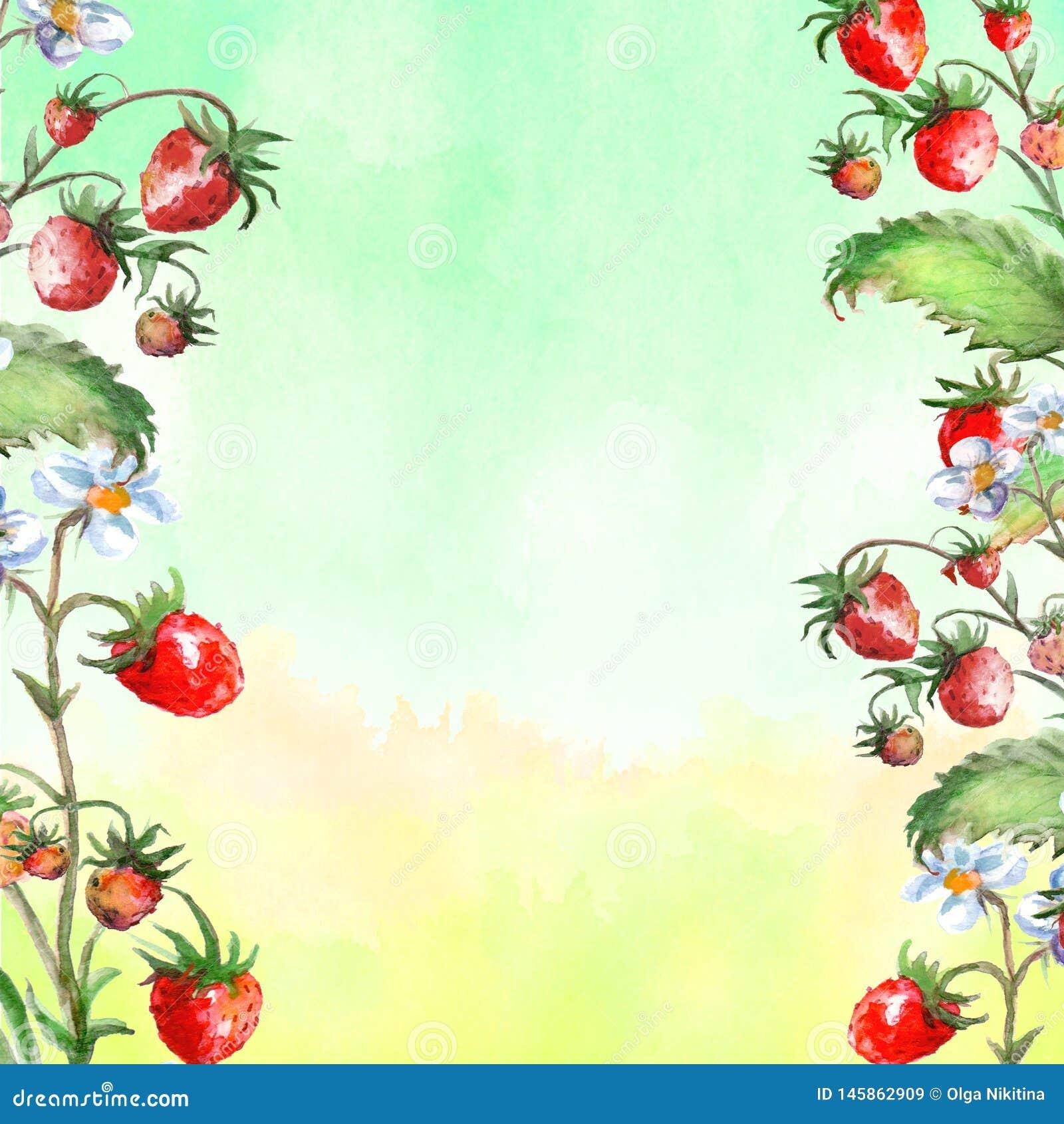 Tarjeta de felicitaci?n de la acuarela, invitaci?n con una fresa de la planta Arbusto floreciente con una baya y una flor rojas
