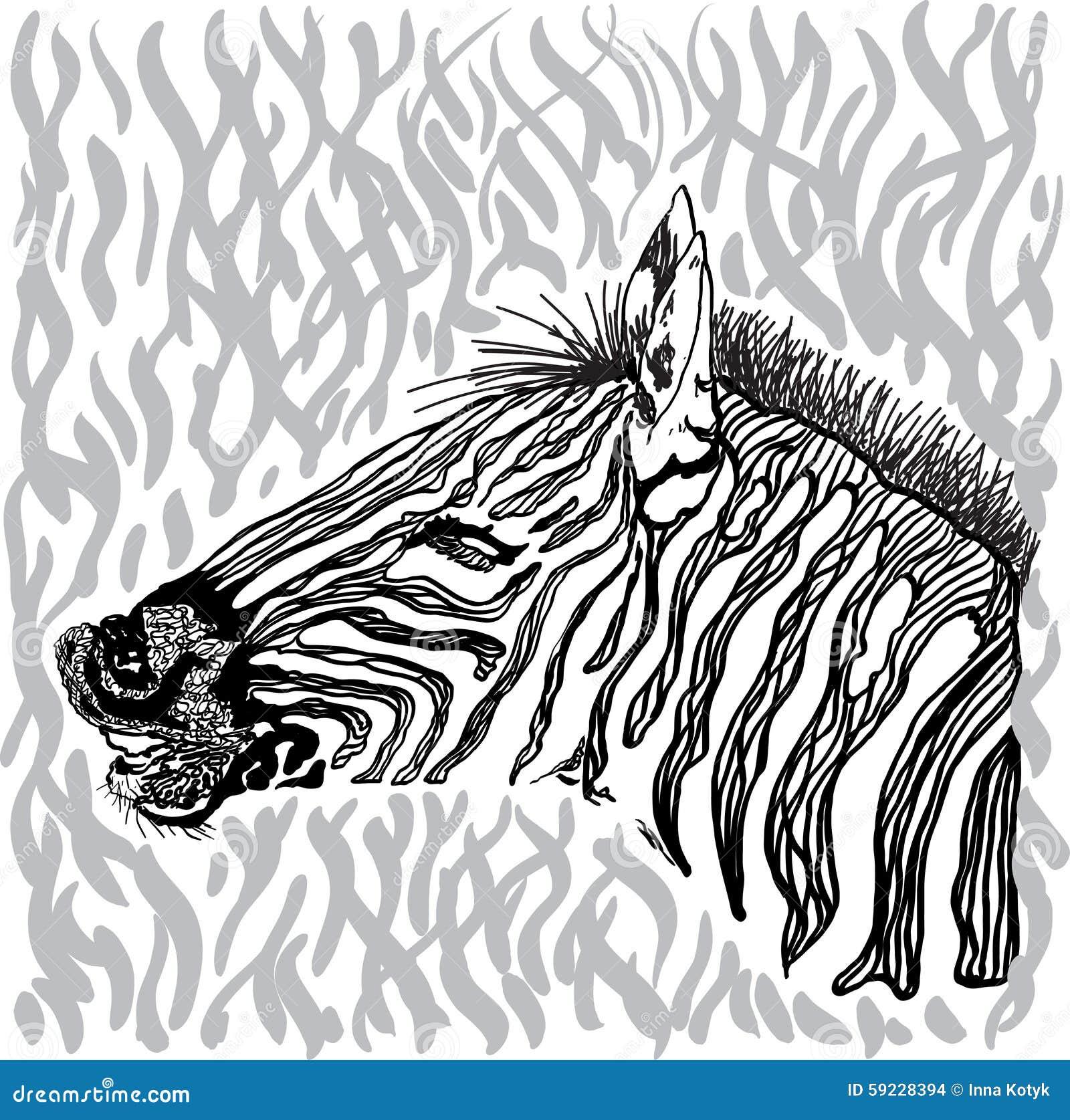 Download Tarjeta de la cebra ilustración del vector. Ilustración de marco - 59228394