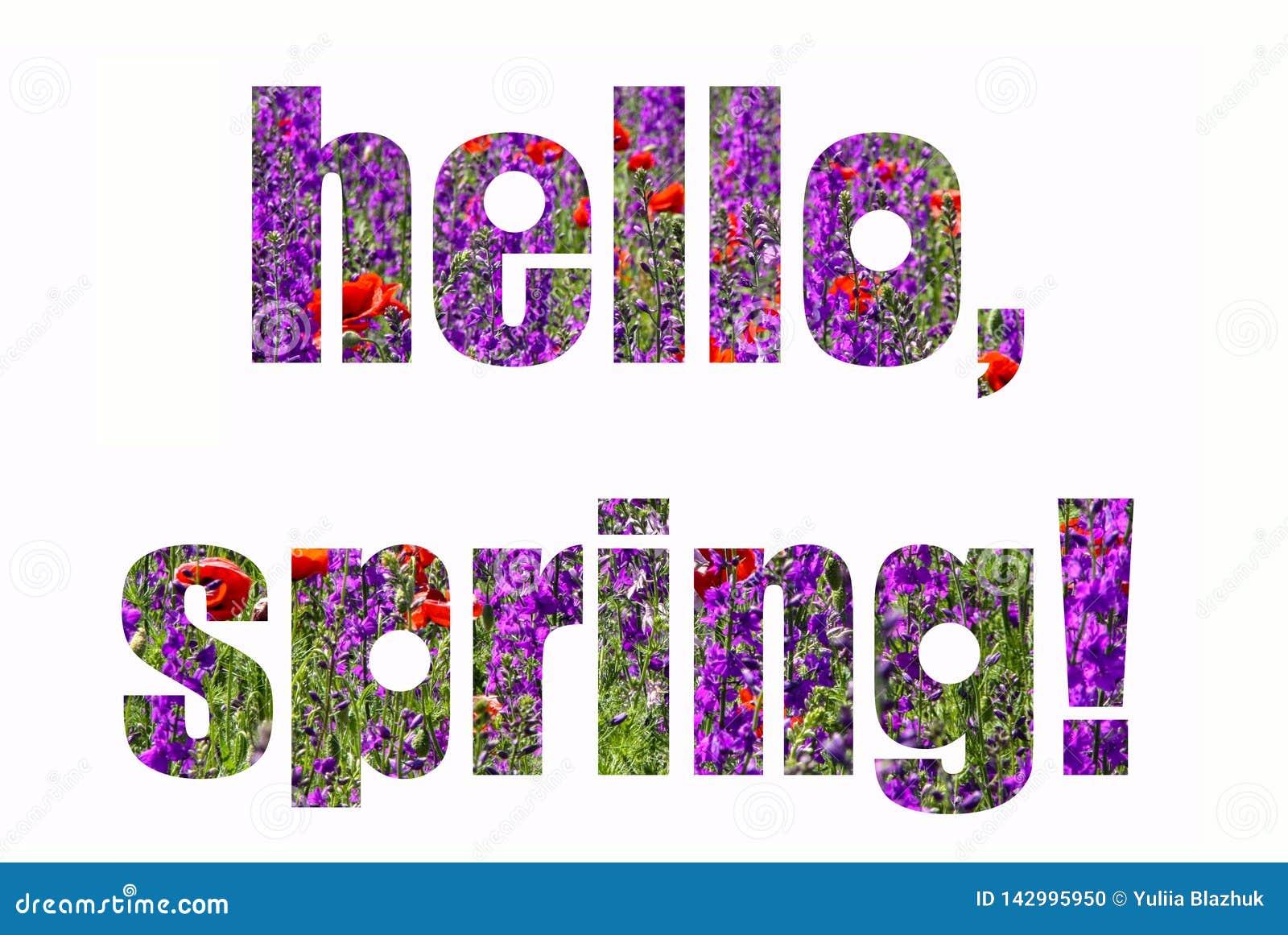 Tarjeta de la primavera con las letras Campo de flores rojo y púrpura