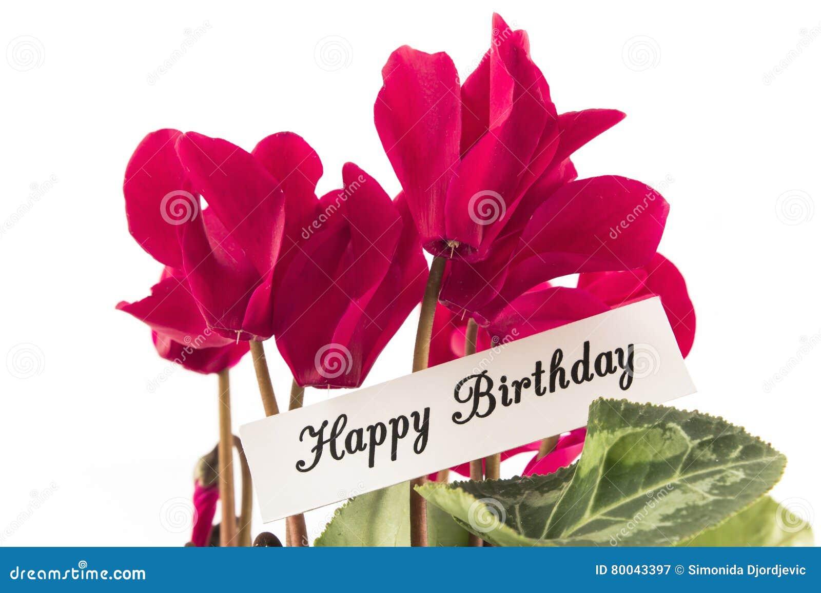 Tarjeta del feliz cumpleaños con el ramo de Cyclamens