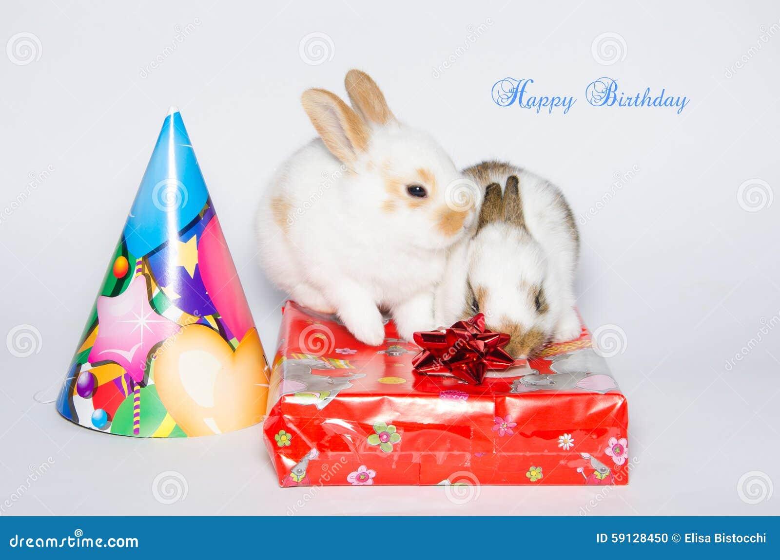 Tarjeta divertida del feliz cumpleaños con los conejos