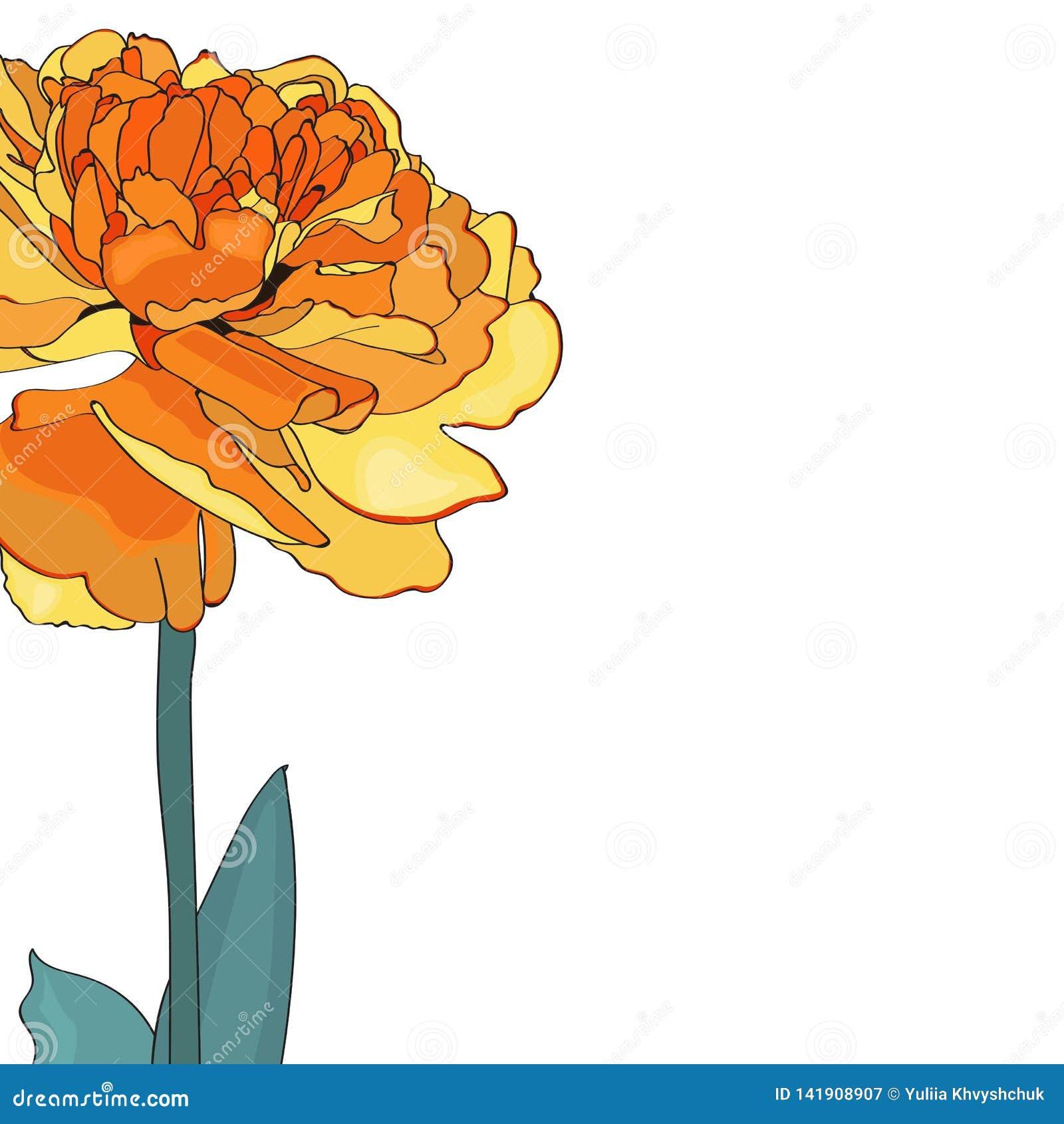 Tarjeta elegante del tulipán amarillo Un ramo decorativo de la primavera Pequeña guirnalda floral