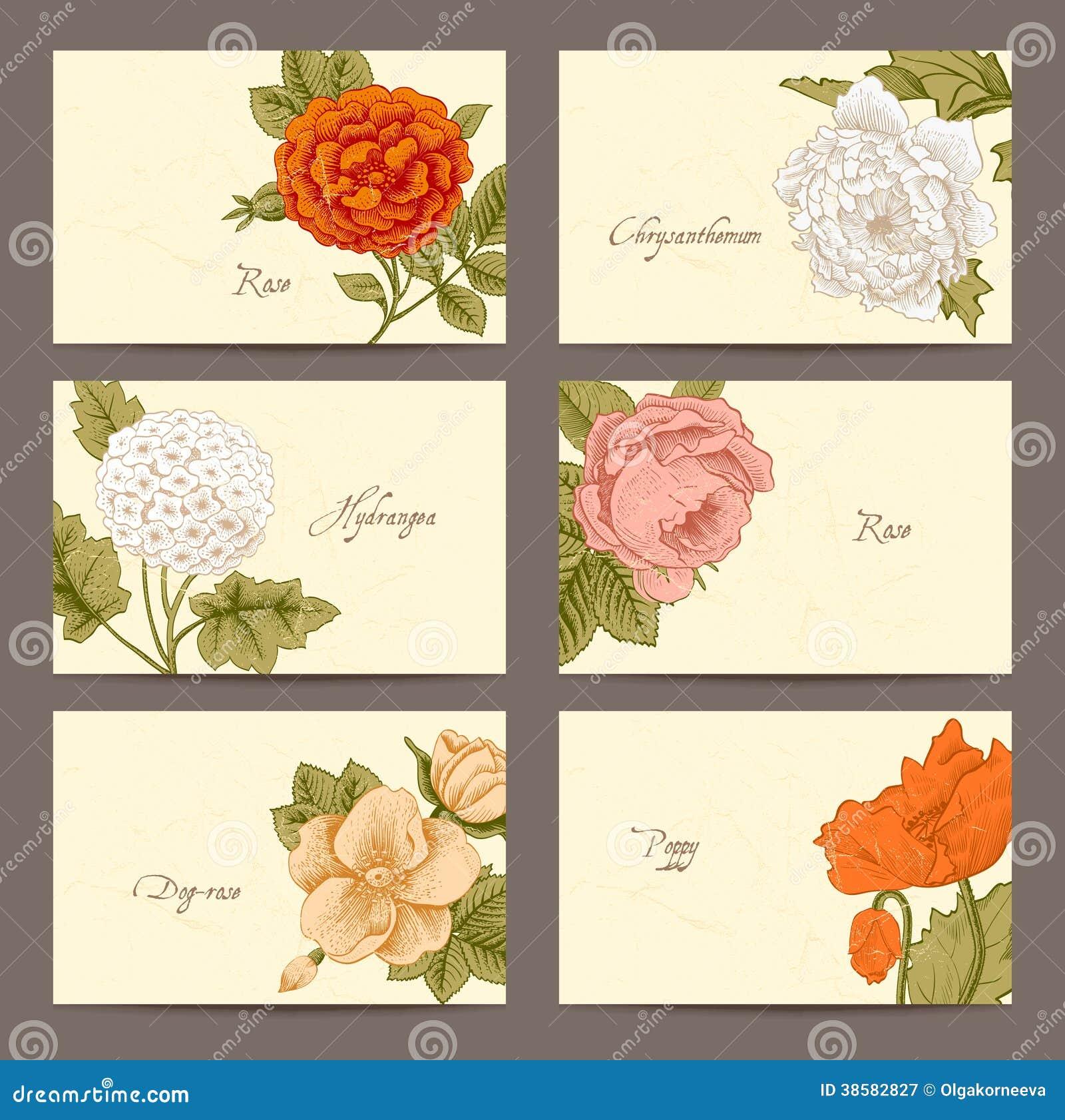 Tarjetas de visita horizontales florales del vintage