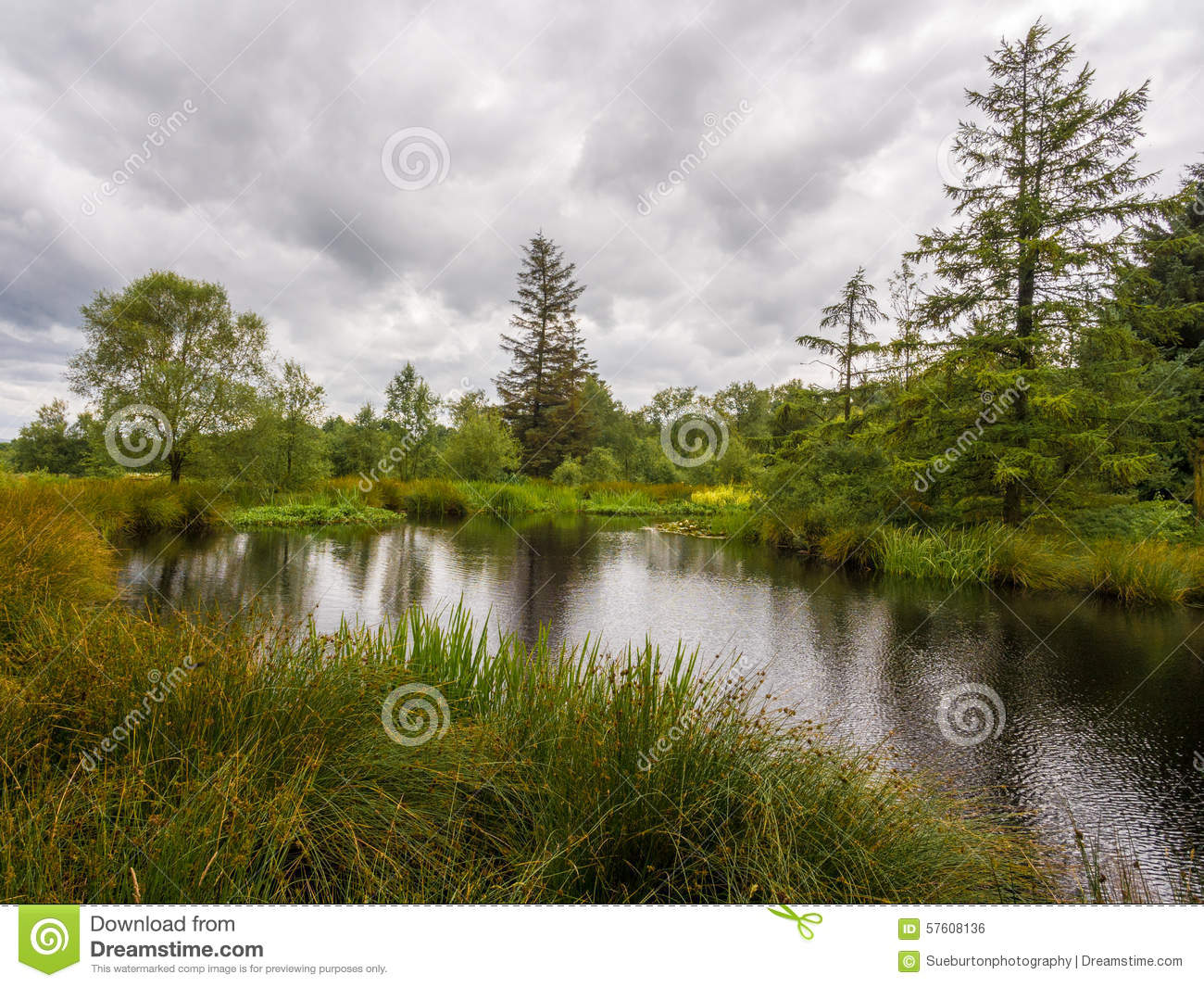 The tarn stock photo image 57608136 for How s the fishing