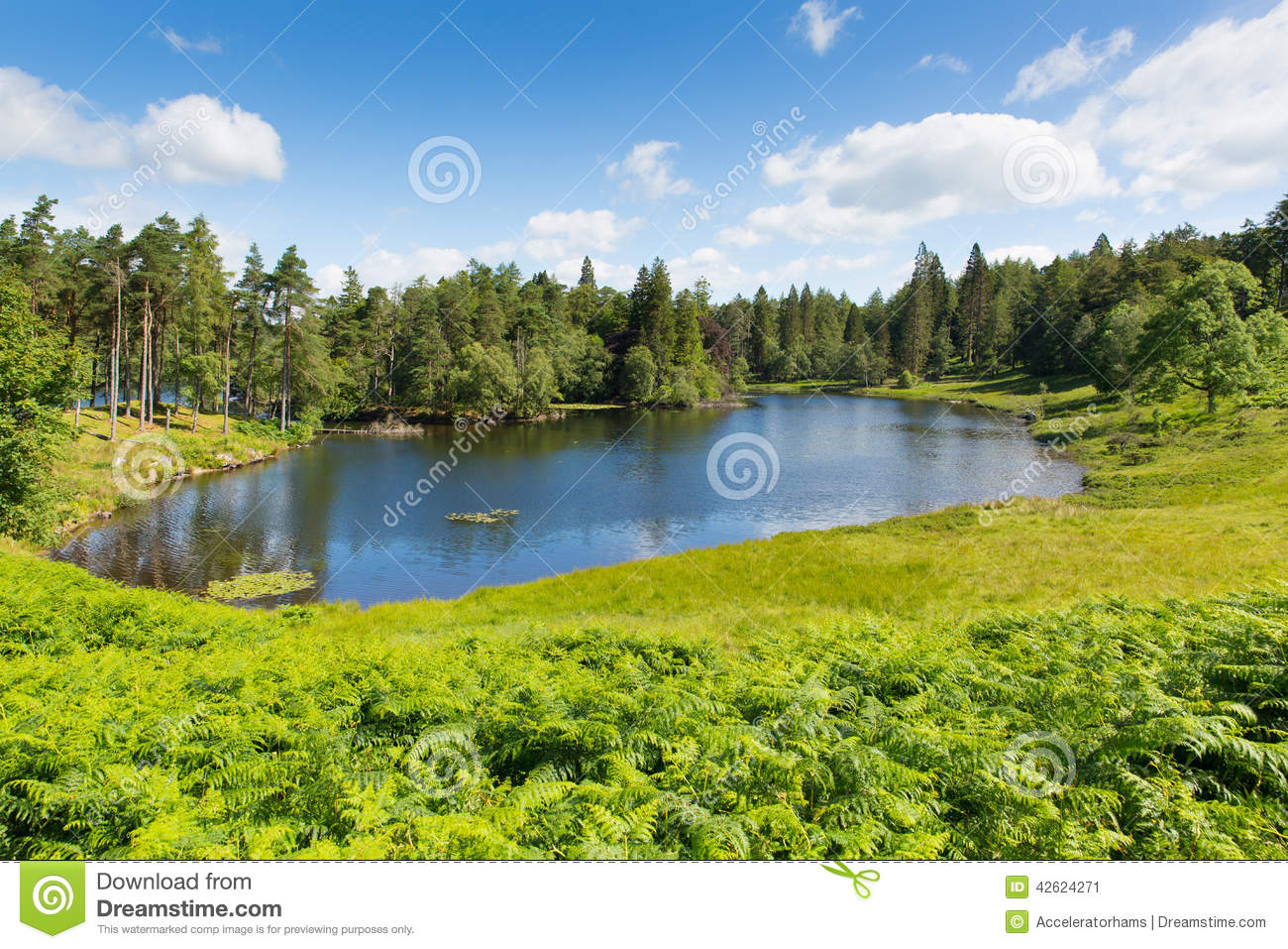 Tarn hows near hawkshead lake district national park for How s the fishing