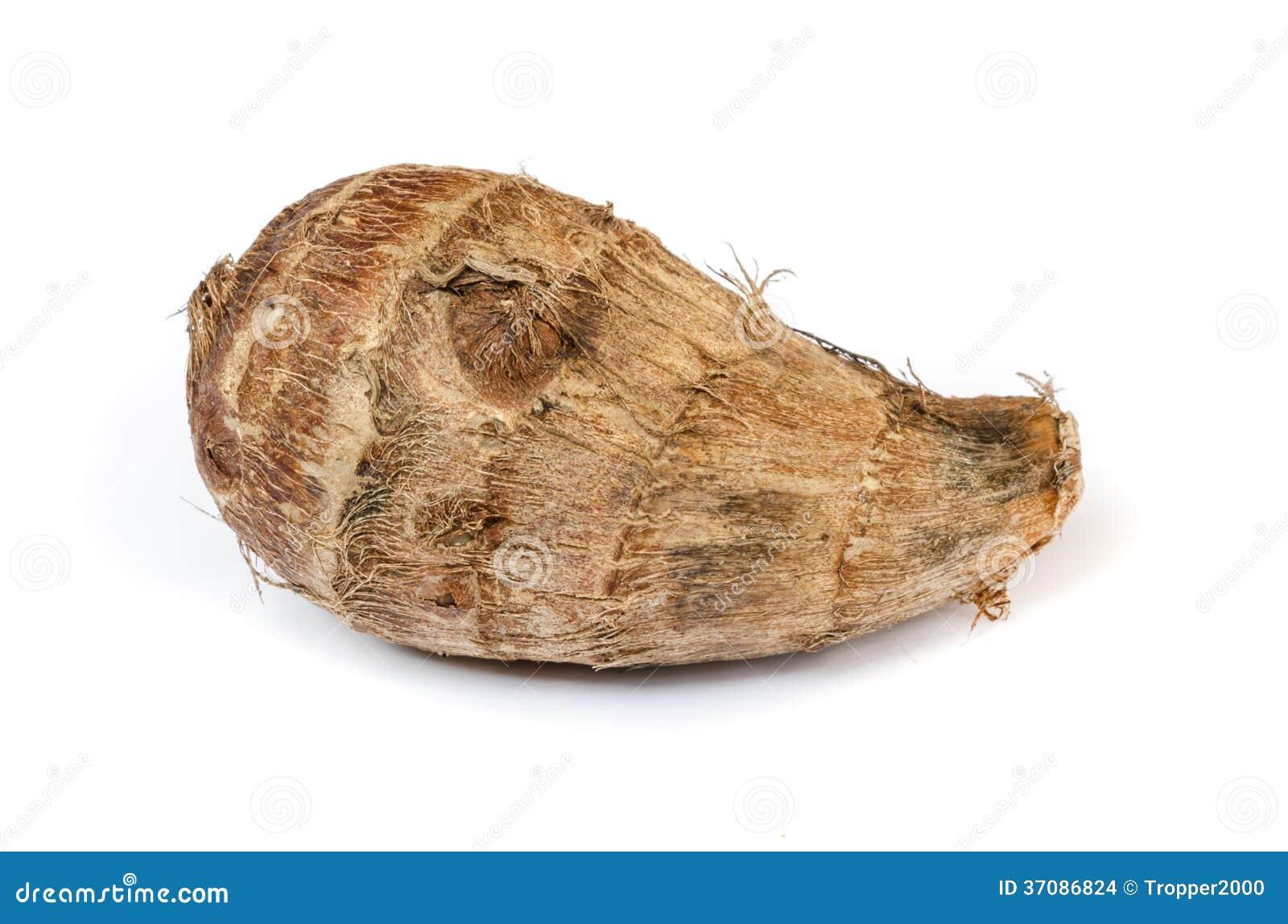 Download Taro korzenie. zdjęcie stock. Obraz złożonej z kopiasty - 37086824