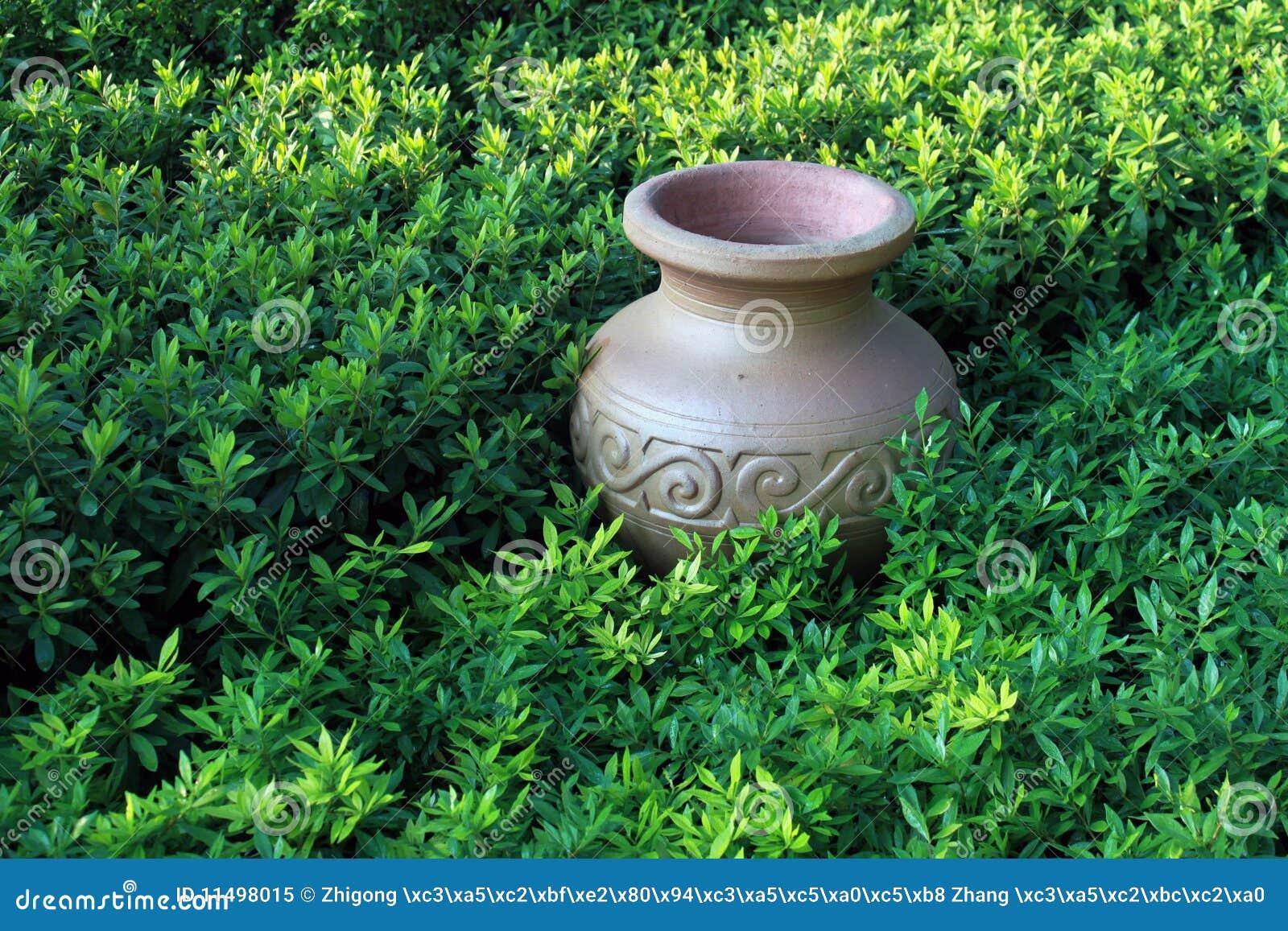 Tarro antiguo en el prado, compos exactos horizontales