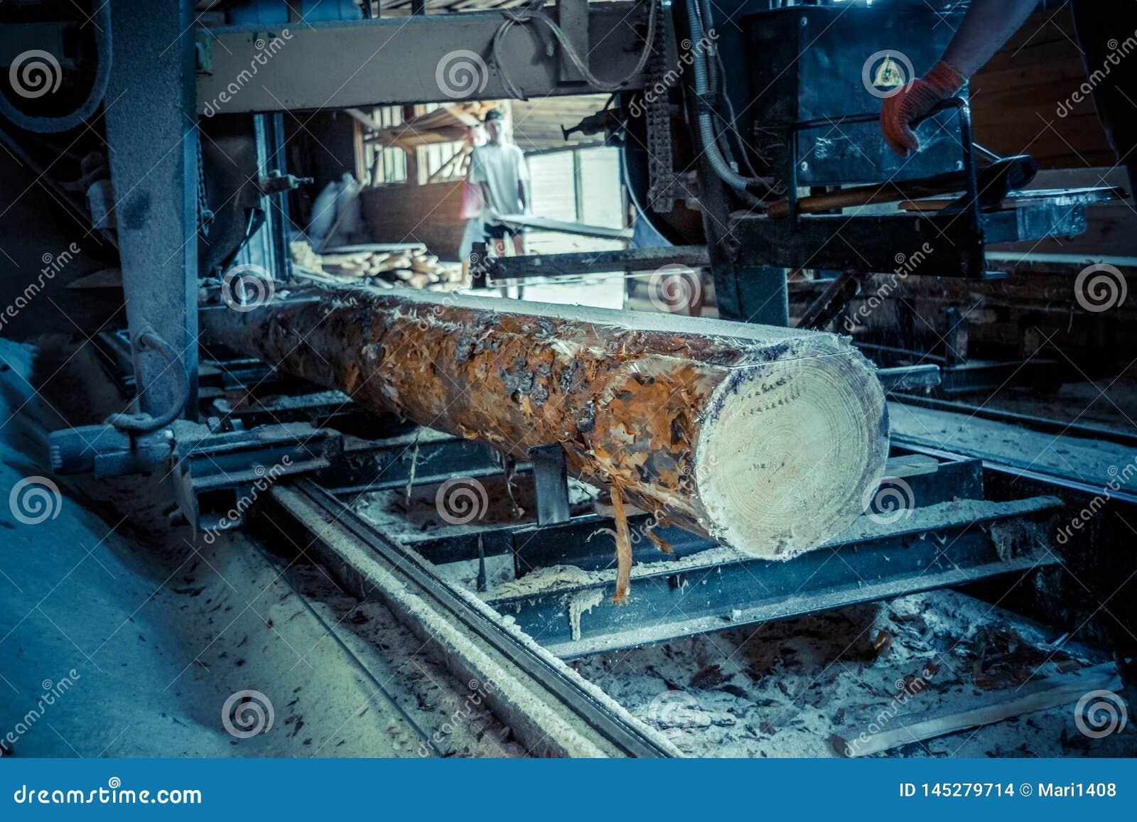 Tartak Proces machining notuje dalej tartaczne maszyn pi?y drzewny baga?nik