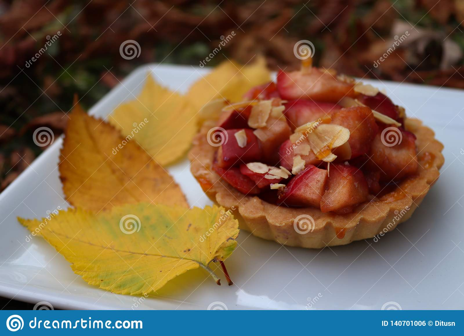 Tartlet colorido del otoño con las manzanas