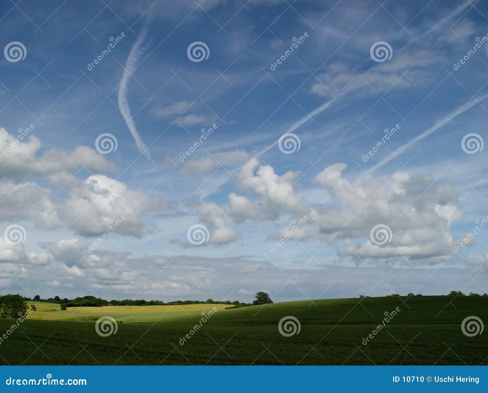 Tarwe + wolken