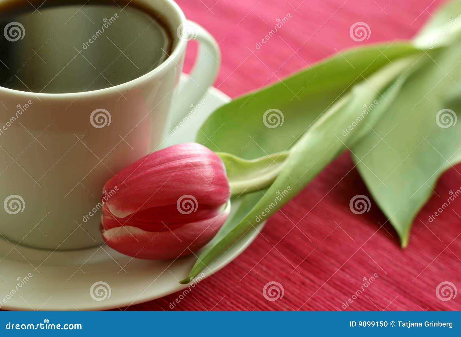 Tasse Kaffee und Tulpe