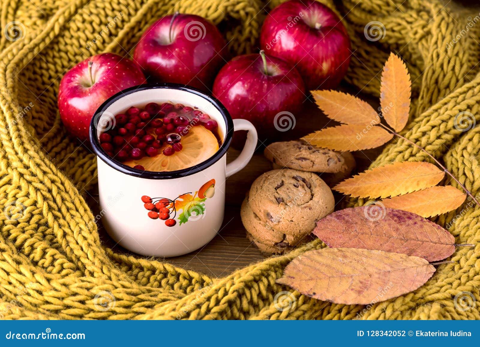 Tasse ou tasse d écharpe tricotée chaude chaude Autumn Maple Leaves Wooden Background Autumn Cold Season Red Appl de Berry Lemon