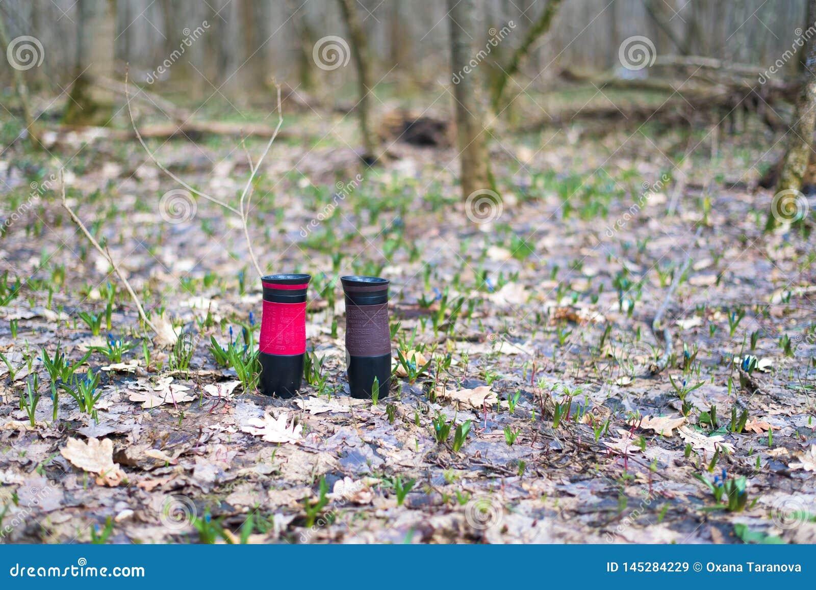 Tasses thermiques dans la forêt au sol la conservation de la chaleur du café ou du thé deux tasses de thermos