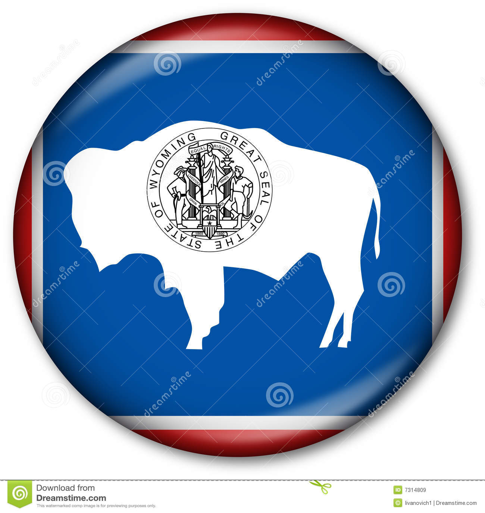 Tasto della bandierina della condizione del Wyoming