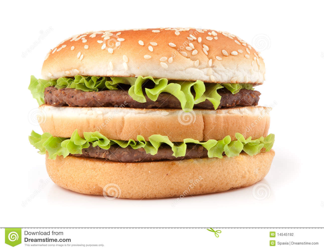 big tasty hamburger essay Continue reading the essay below the complete history of the hamburger,  animated  mcdonald's big mac special sauce again, pickle.