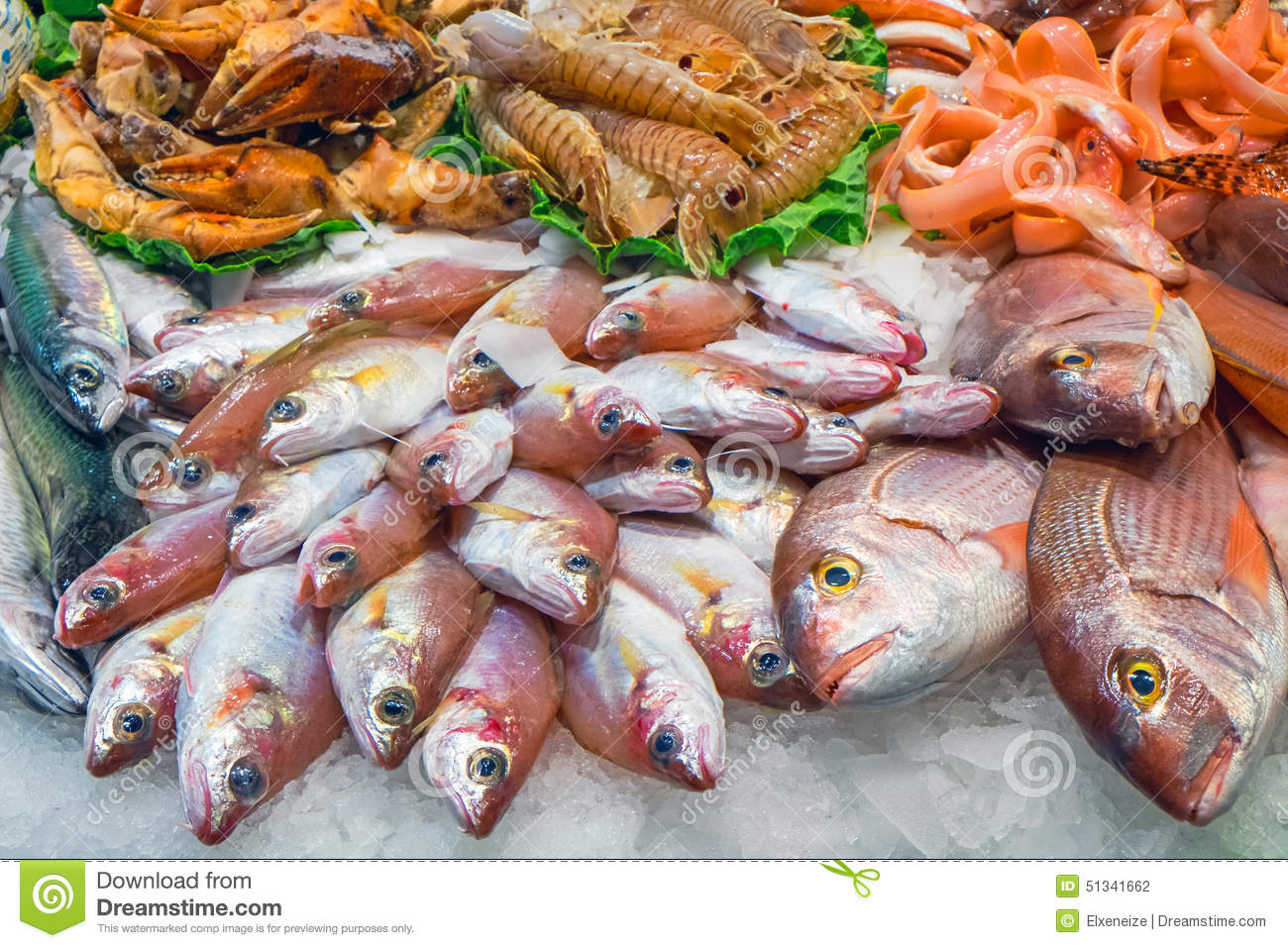 Tasty fish and seafood stock photo image 51341662 for Fish and seafood