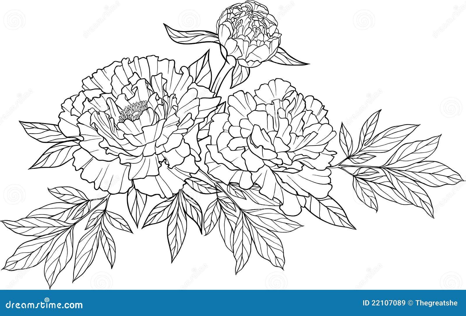 Tatouage Realiste De Fleur De Pivoine Du Dessin Trois Illustration