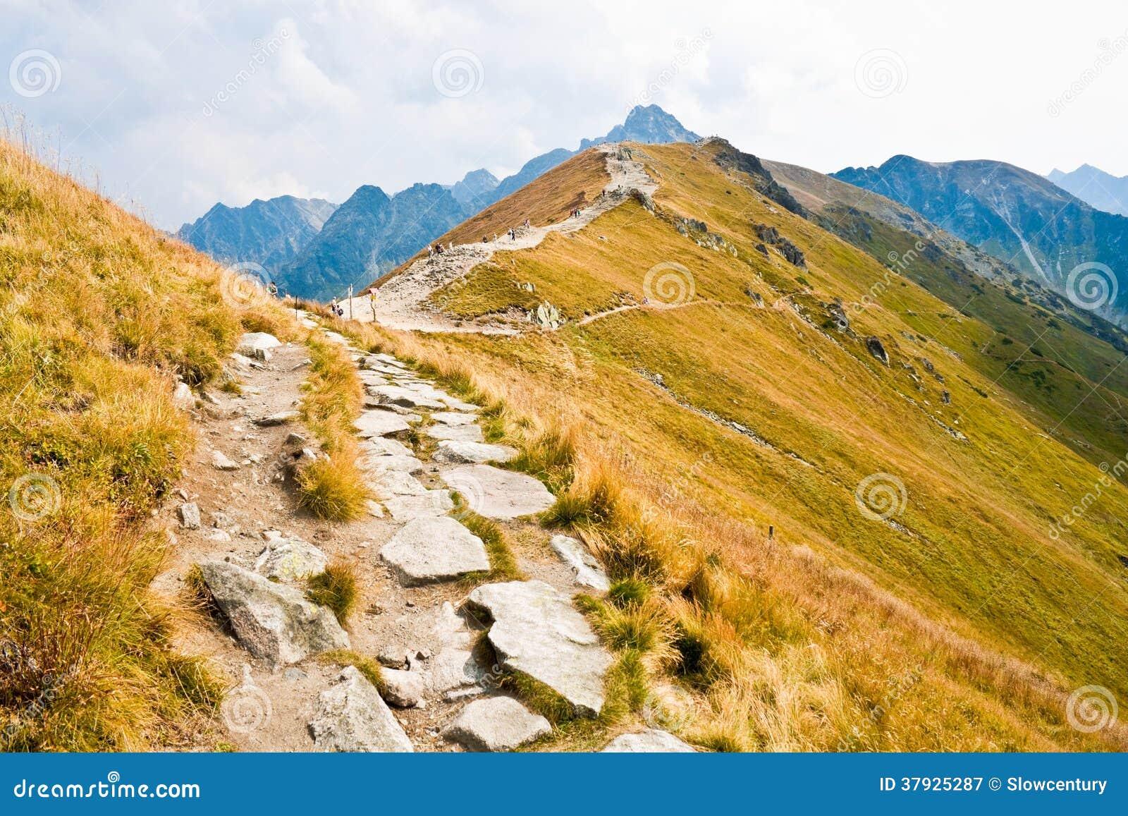 Путь в горах Tatra