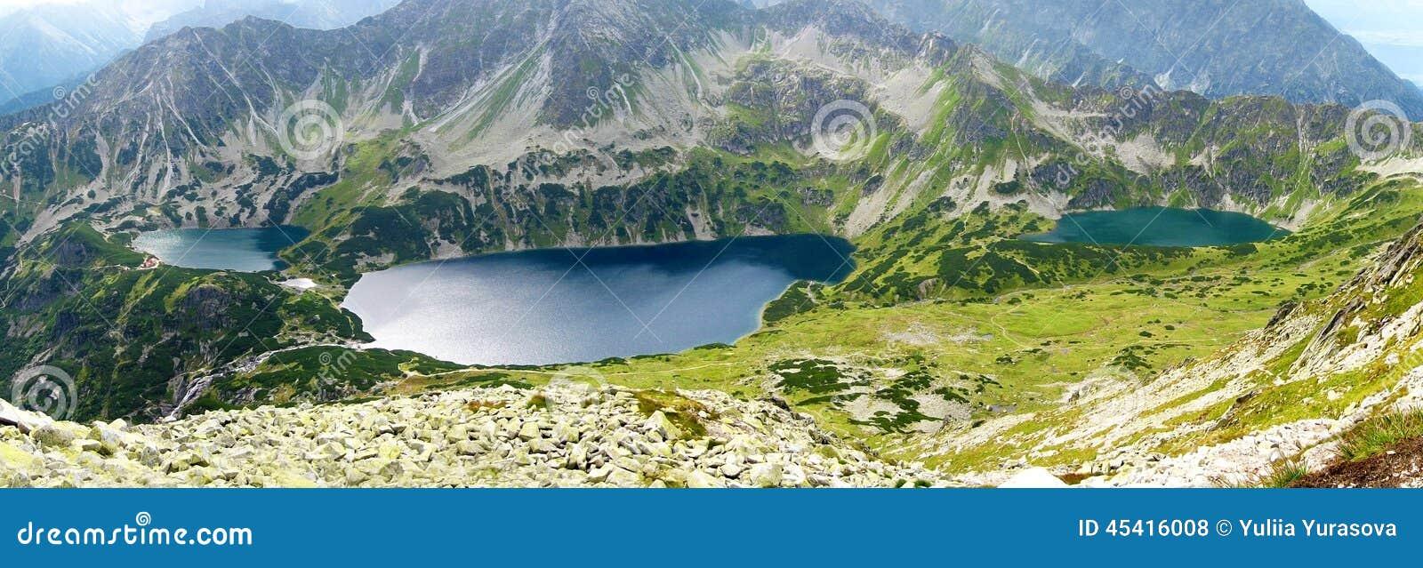 Tatrabergen in Polen, groene heuvel, meer en rotsachtige piek in de zonnige dag met duidelijke blauwe hemel
