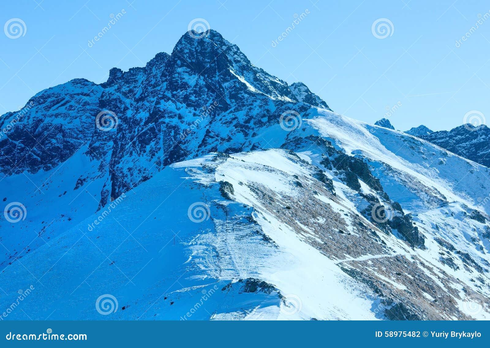 在西tatras的kasprowy wierch 分支冷杉雪樹型視圖冬天