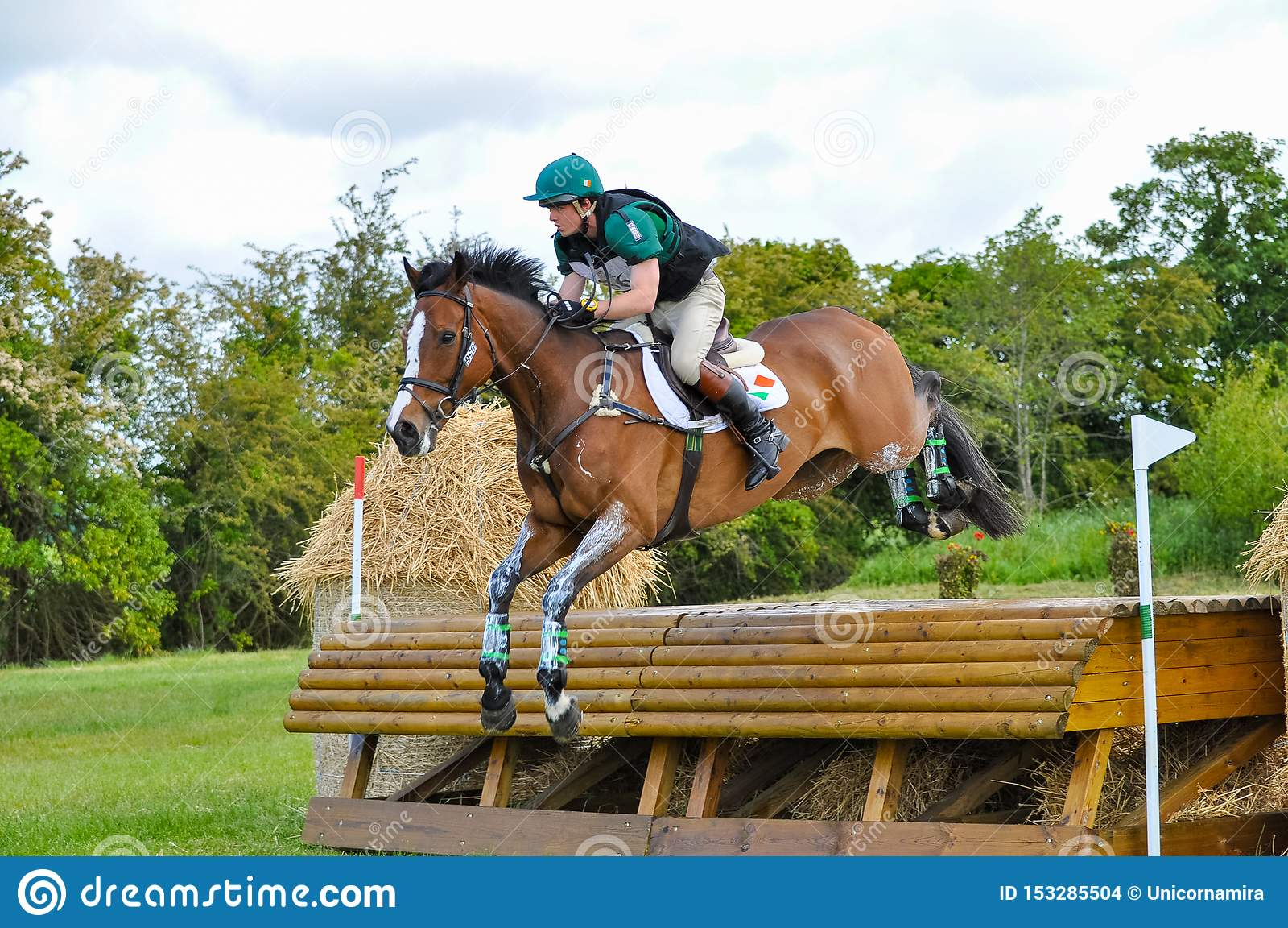 Tattersalls Horse Show In Ireland Brown Chestnut Horse Jumping Over Obstacle With Male Rider Jockey Editorial Stock Image Image Of Training Horse 153285504