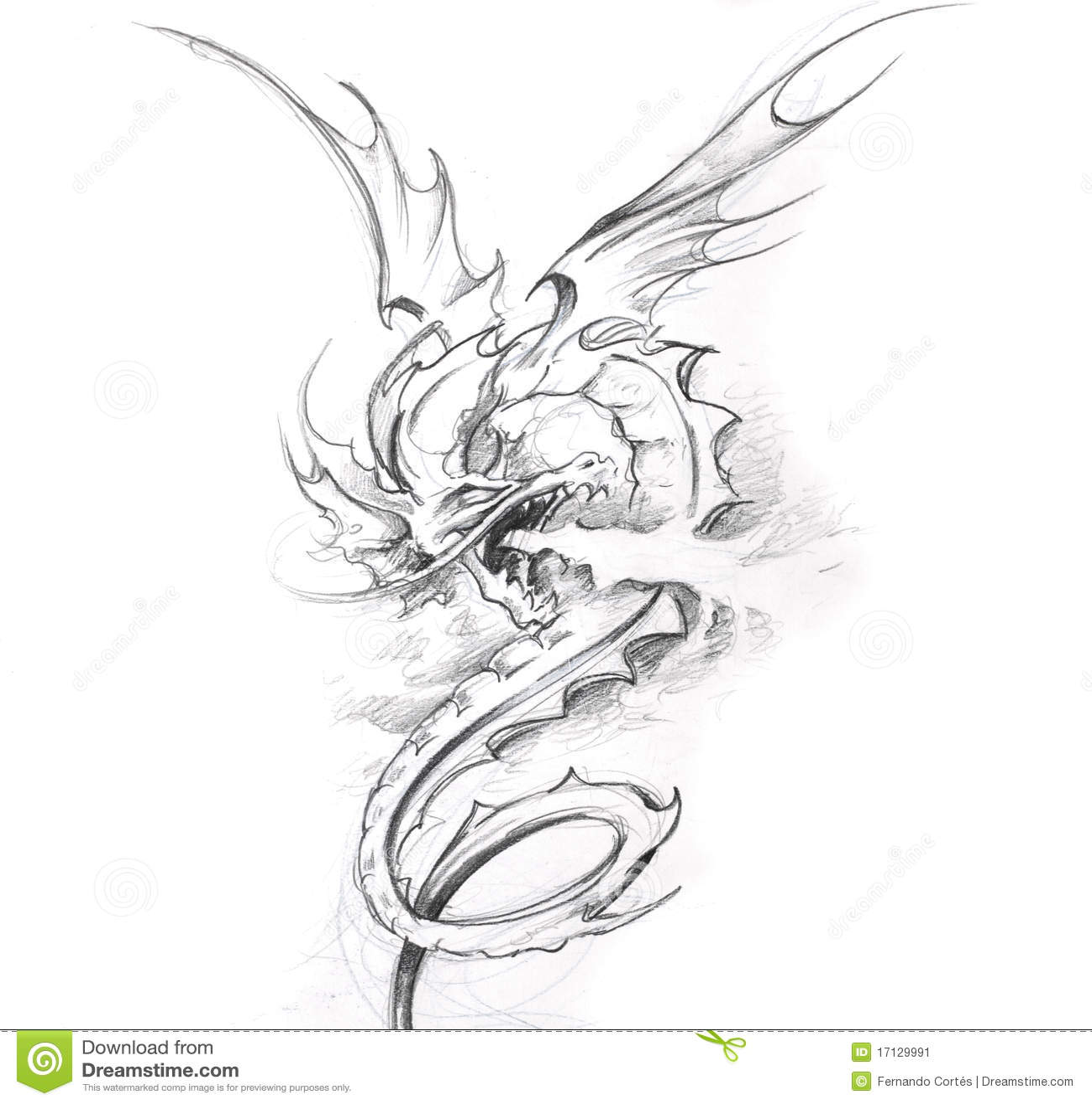Tattoo Art Sketch Of A Medieval Dragon Stock Illustration