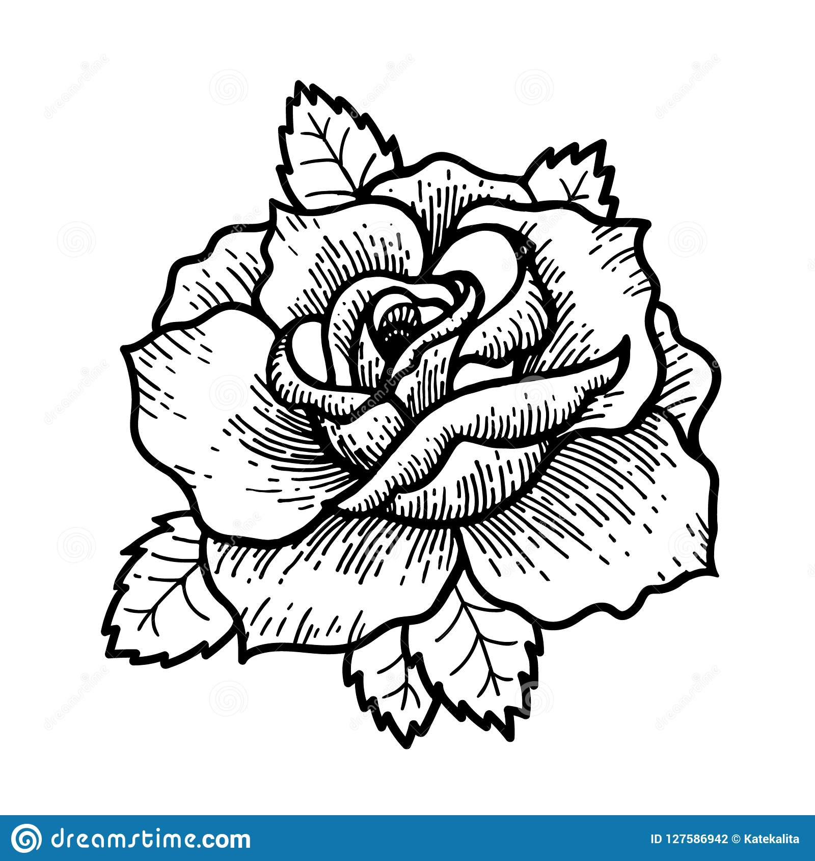 Tattoo Rose FlowerTattoo Mystic Symbol Boho Print Poster T Shirt Textiles Vector Illustration Art Vintage Engraving Style Traditional