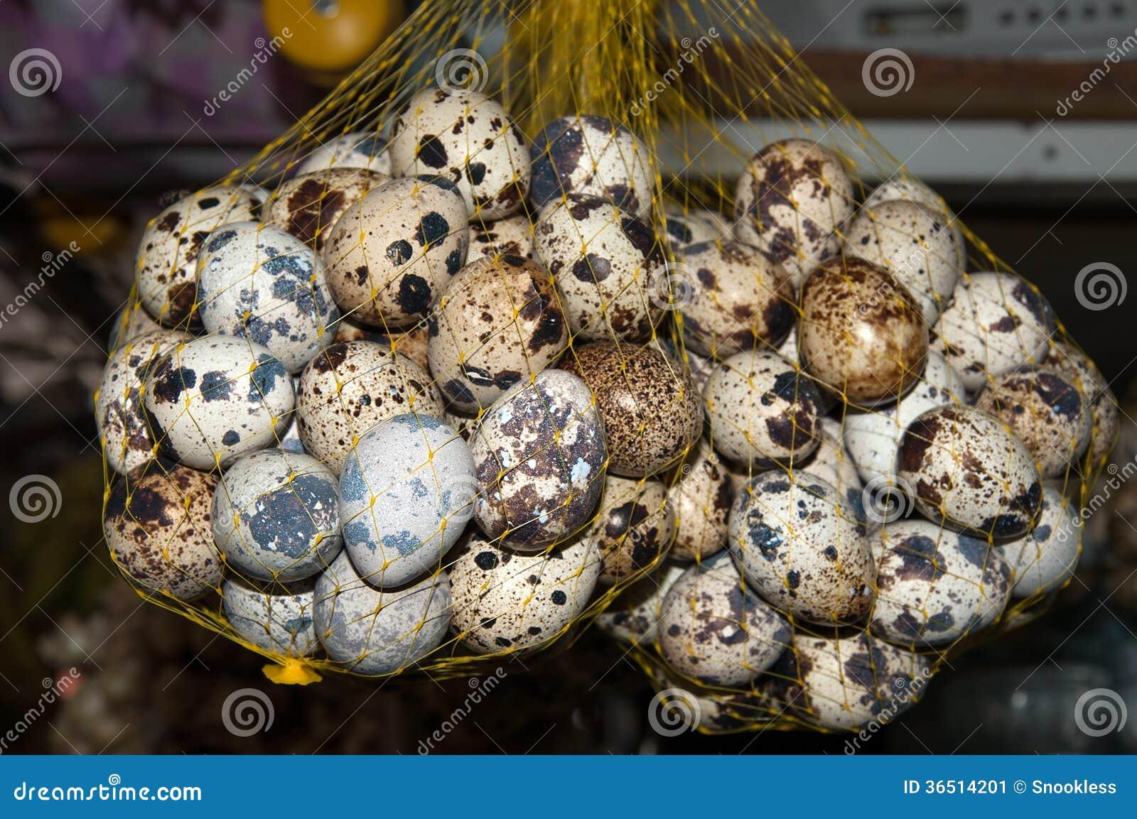 Tauben eier stockbild bild von bauernhof eierschale for Innendekoration tagerwilen