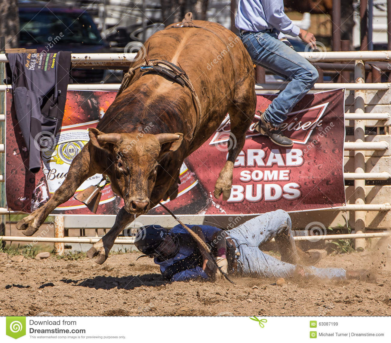Download Taureau Rider Goes Down image stock éditorial. Image du down - 63087199