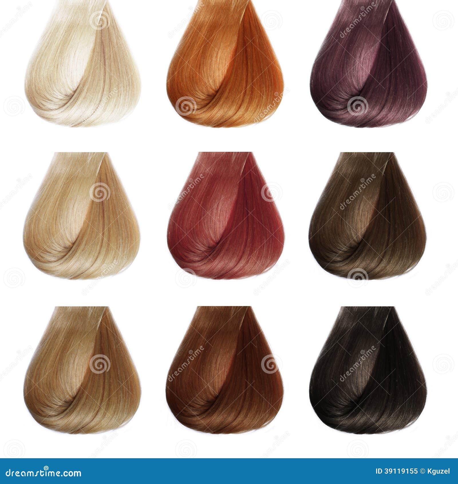 Tavolozza Dei Capelli Insieme Di Colori Immagine Stock