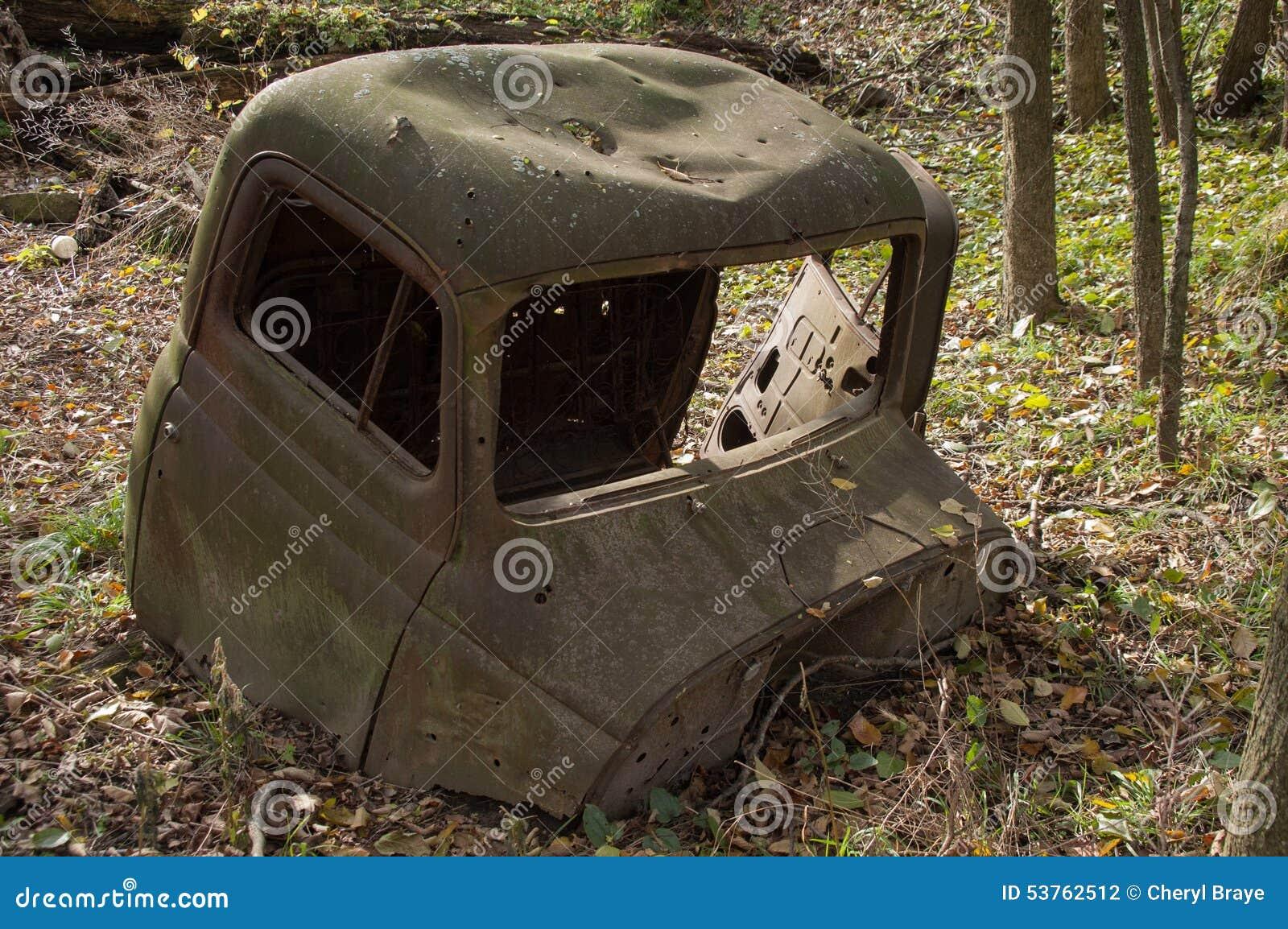 Taxi del camión en bosque