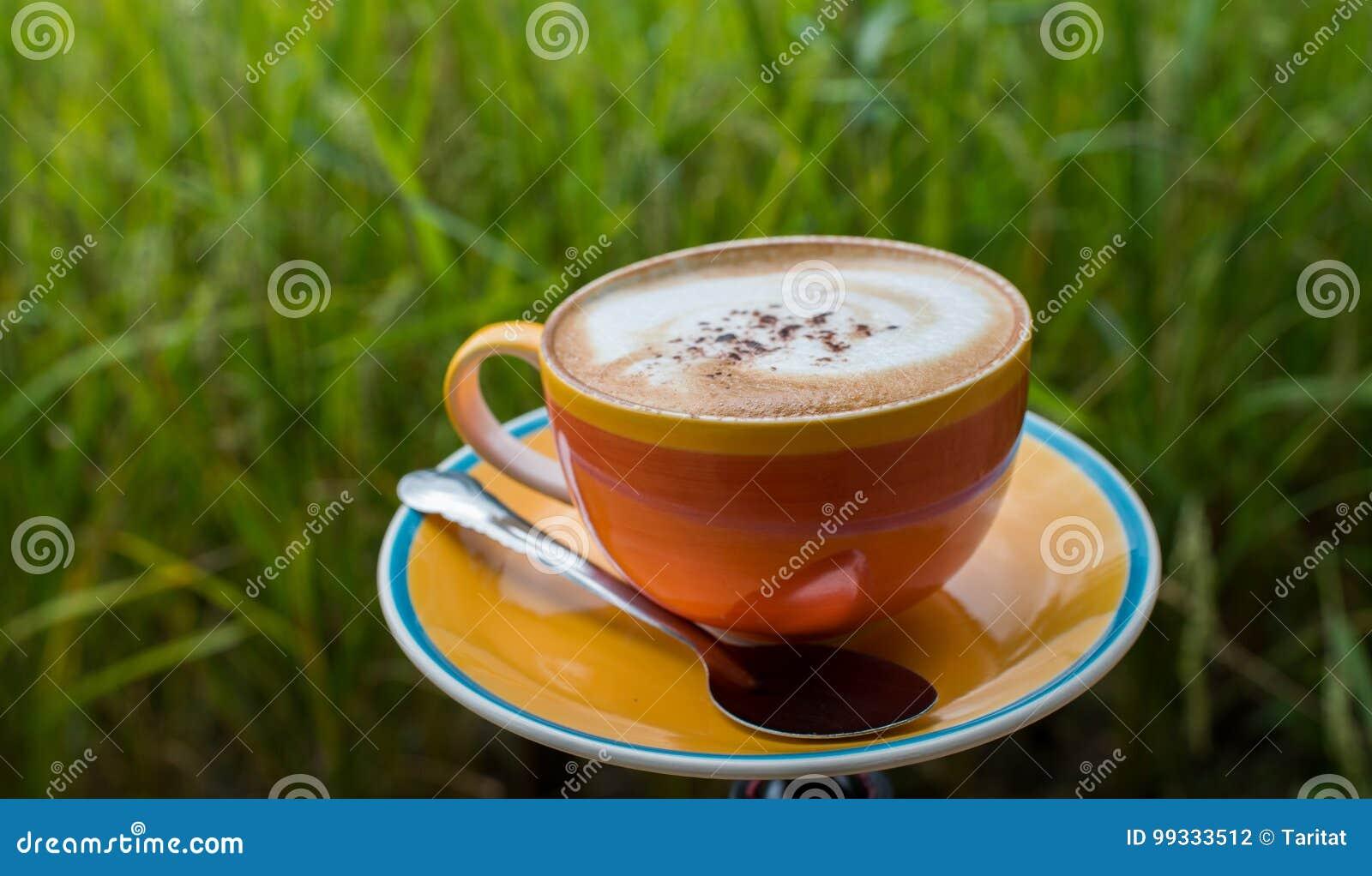Taza De Café En La Terraza De Madera Con El Campo Verde Del