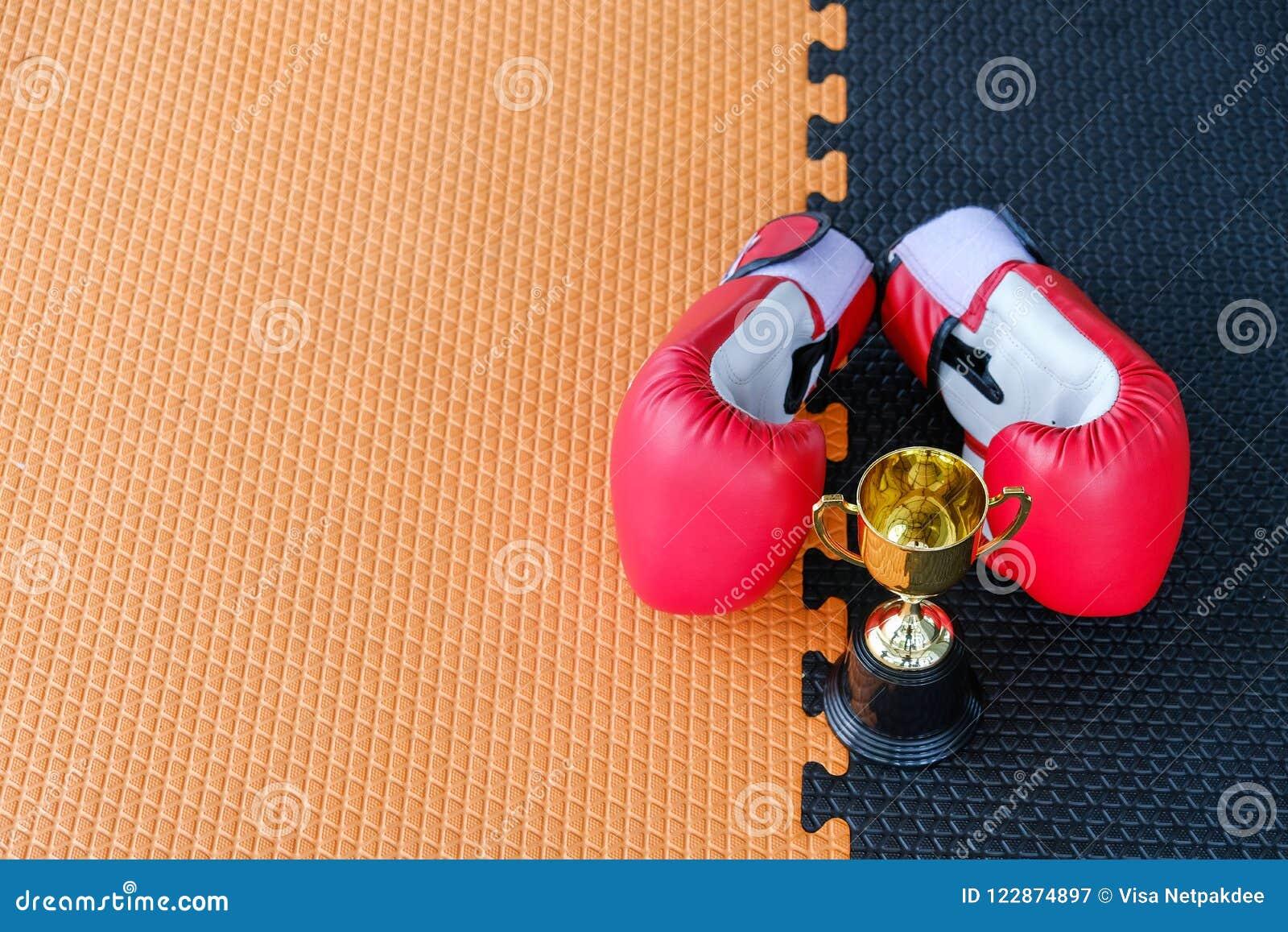 Taza de oro del trofeo con los guantes de boxeo rojos
